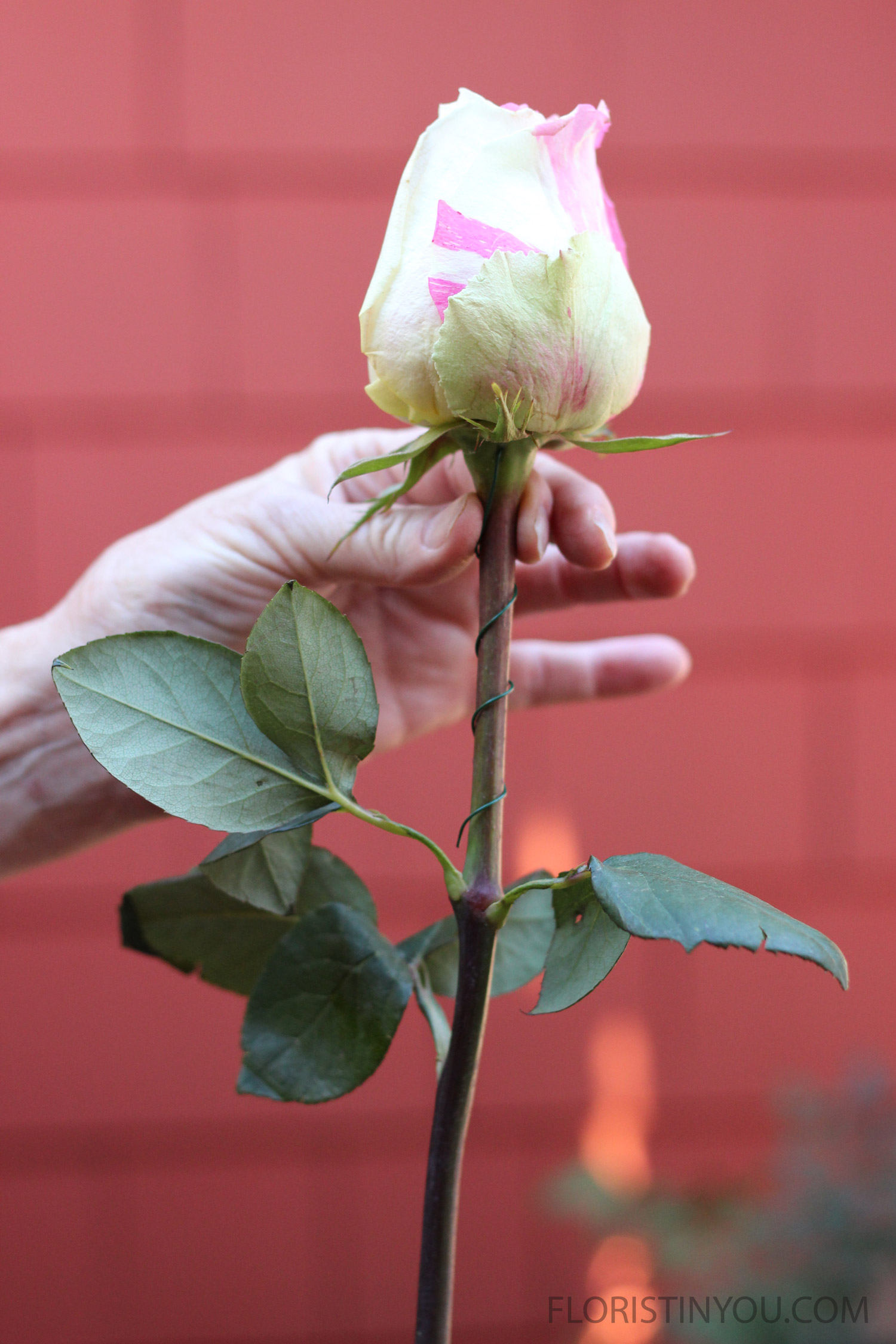 Itwill look like this. Don't wire all the way down the stem, because wires get tangled in the vase.