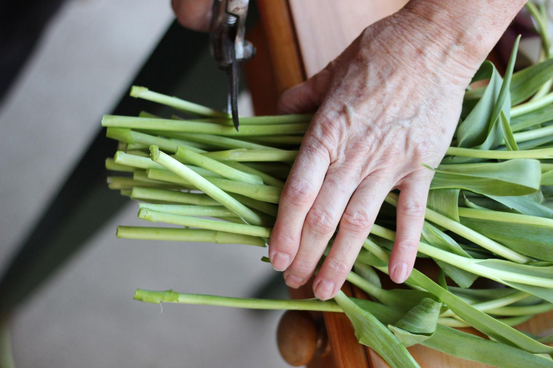 When you start the arrangement, trim each stem again.