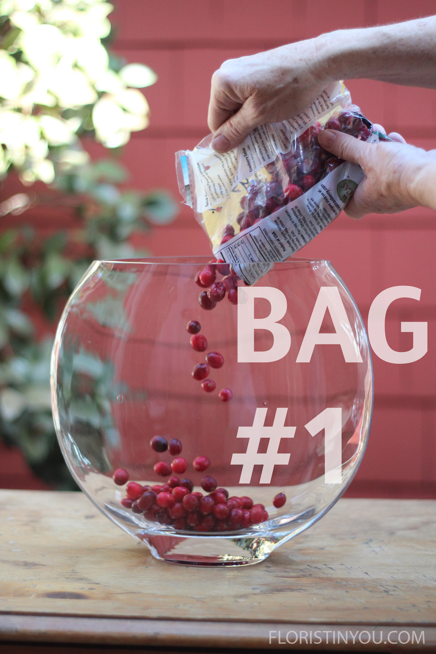 Fill your vase with two12 ounce bags of fresh cranberries.