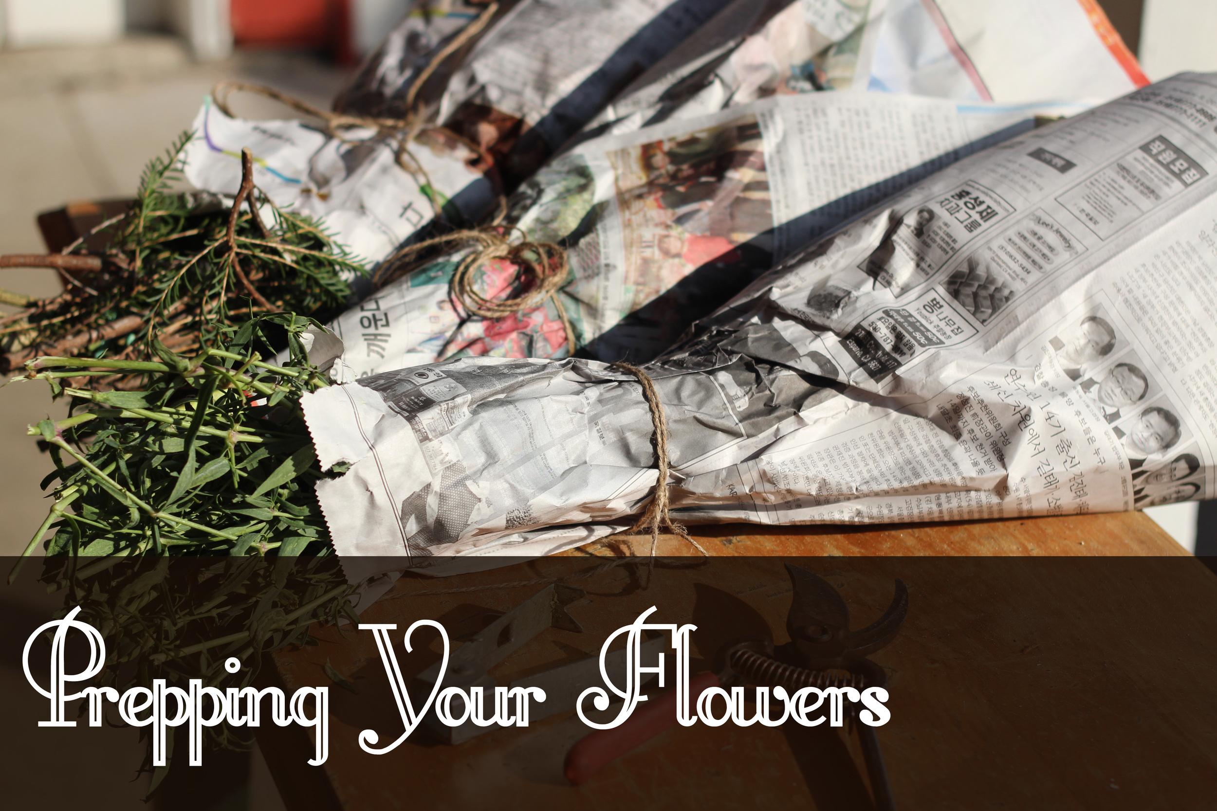 preppingyourflowers.jpg