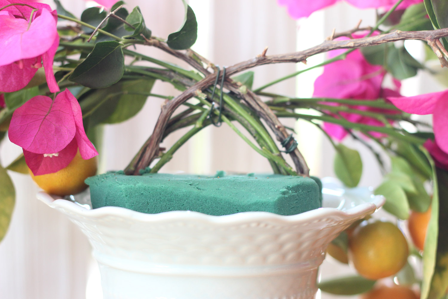 Wire around Bougainvillea and lime stems.