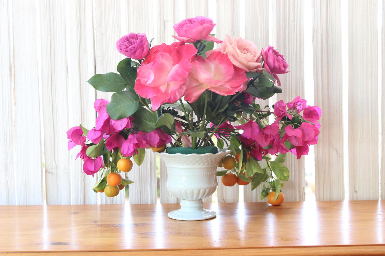 Add Gemini roses & 1 New Zealand Rose (below Baroness.)