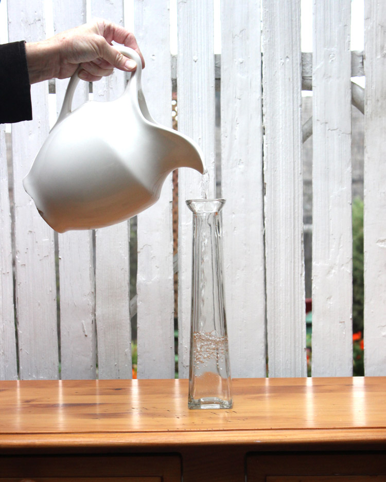 Fill vase with water up to a couple of inches belowtop.