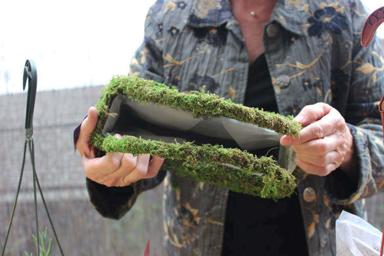 Select a moss purse with a plastic liner.
