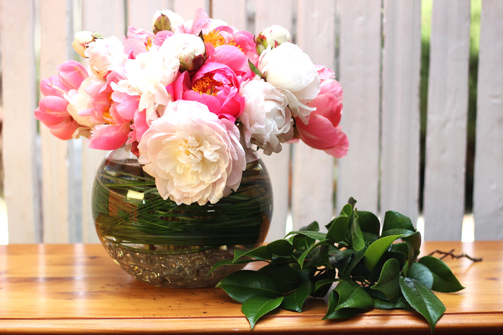 Cut 6 camellia leaves or lemon leaves. Add 3 to front and 3 to back.