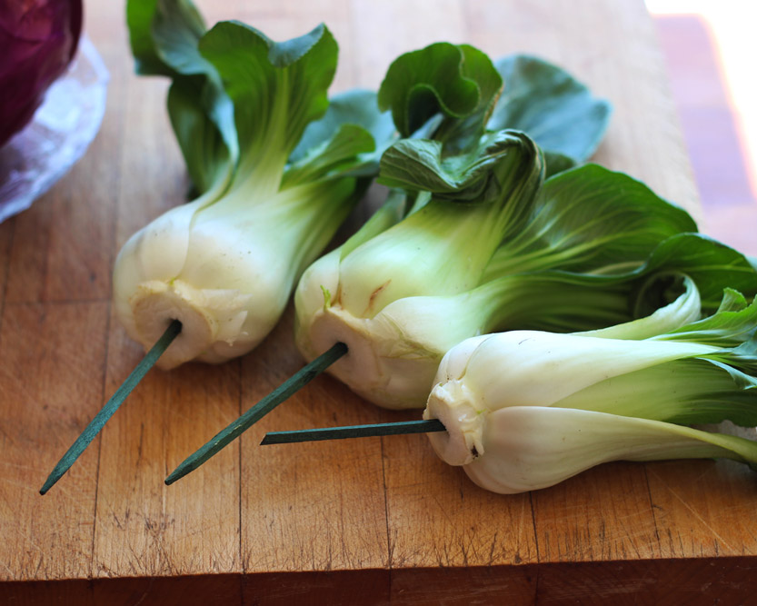 Put blunt edge of picks into Chinese Cabbage like so.