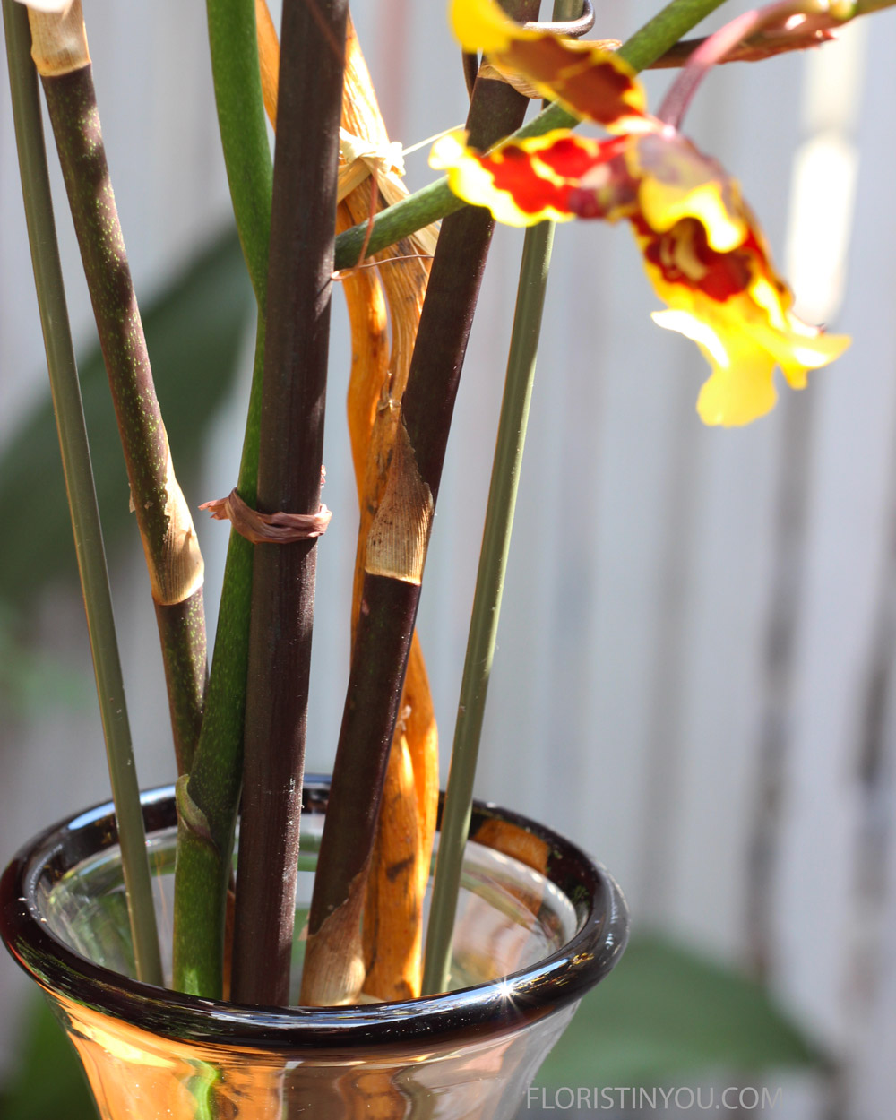 Use dark on dark stems, like so. Cut close and put knots to the back.