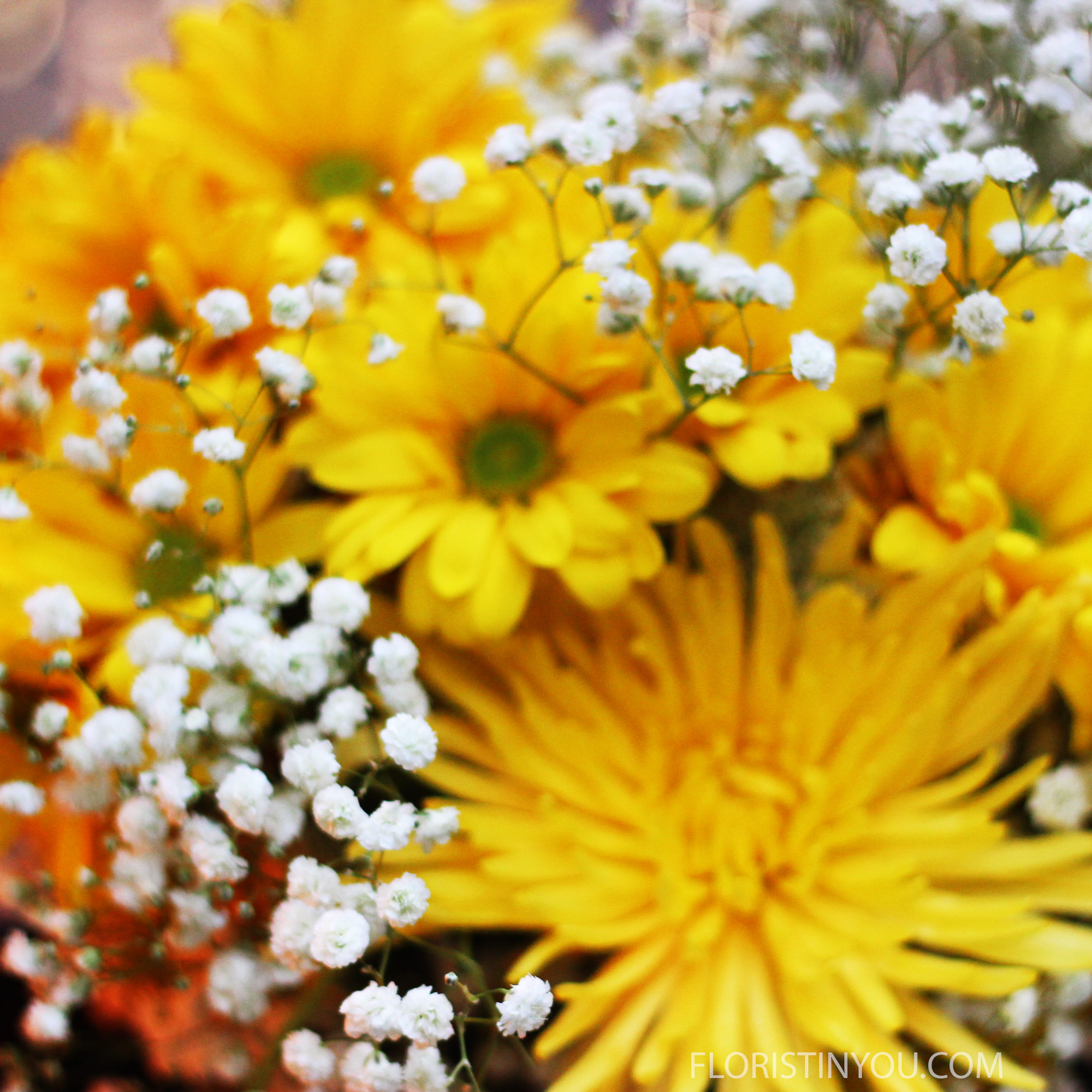 Smell the daisies.