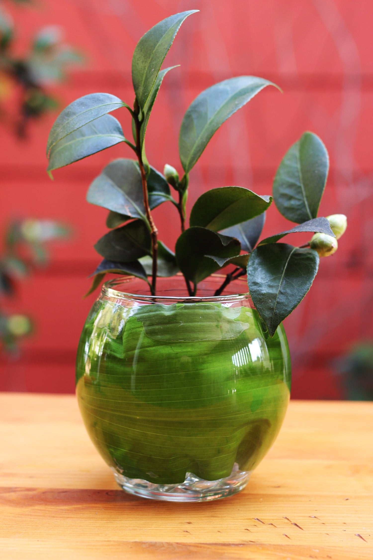 Put your camellia stem with buds in the back (or if you have 2, put one in back and one in front.)
