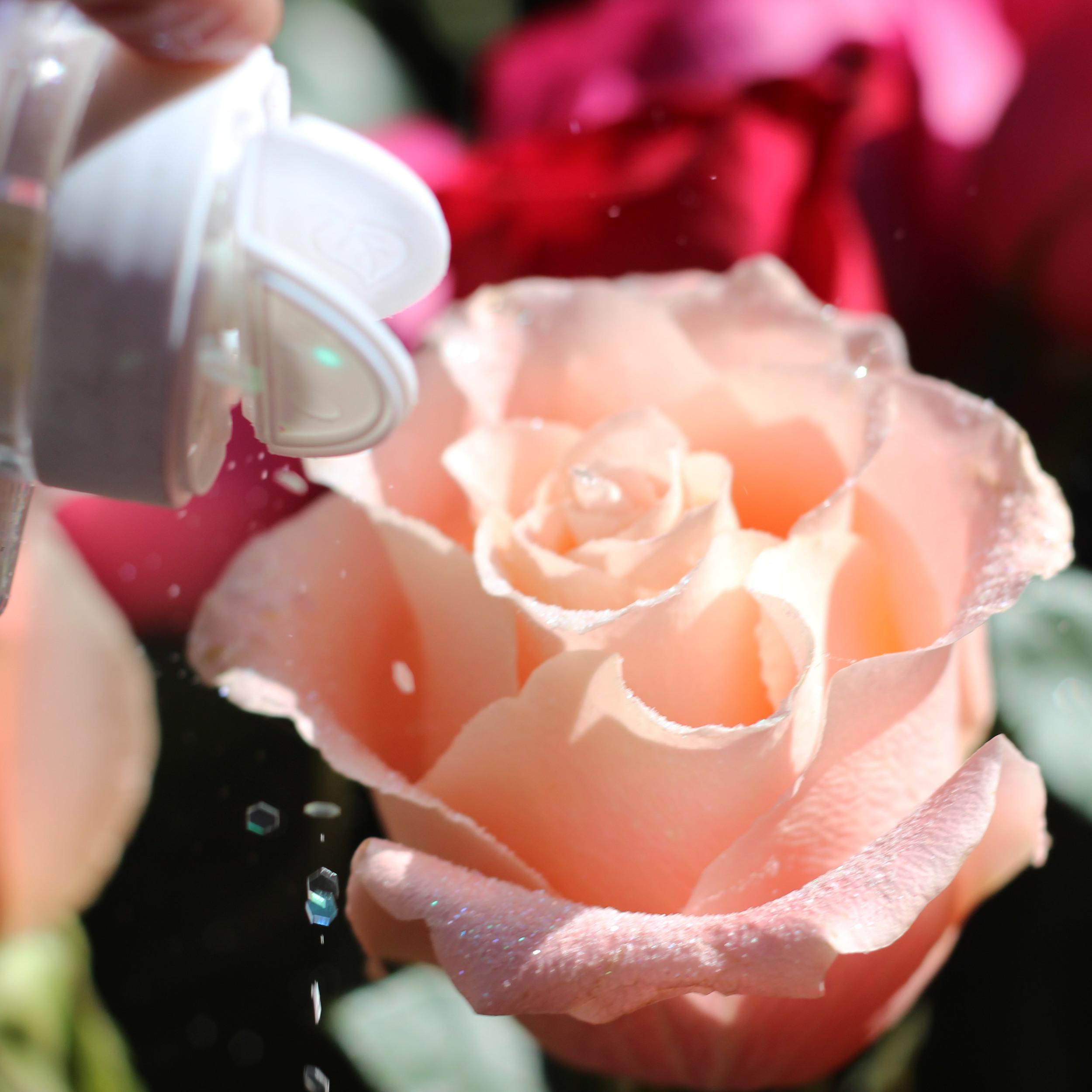 Sprinkle edge with jumbo glitter. Put glitter on half peach roses.