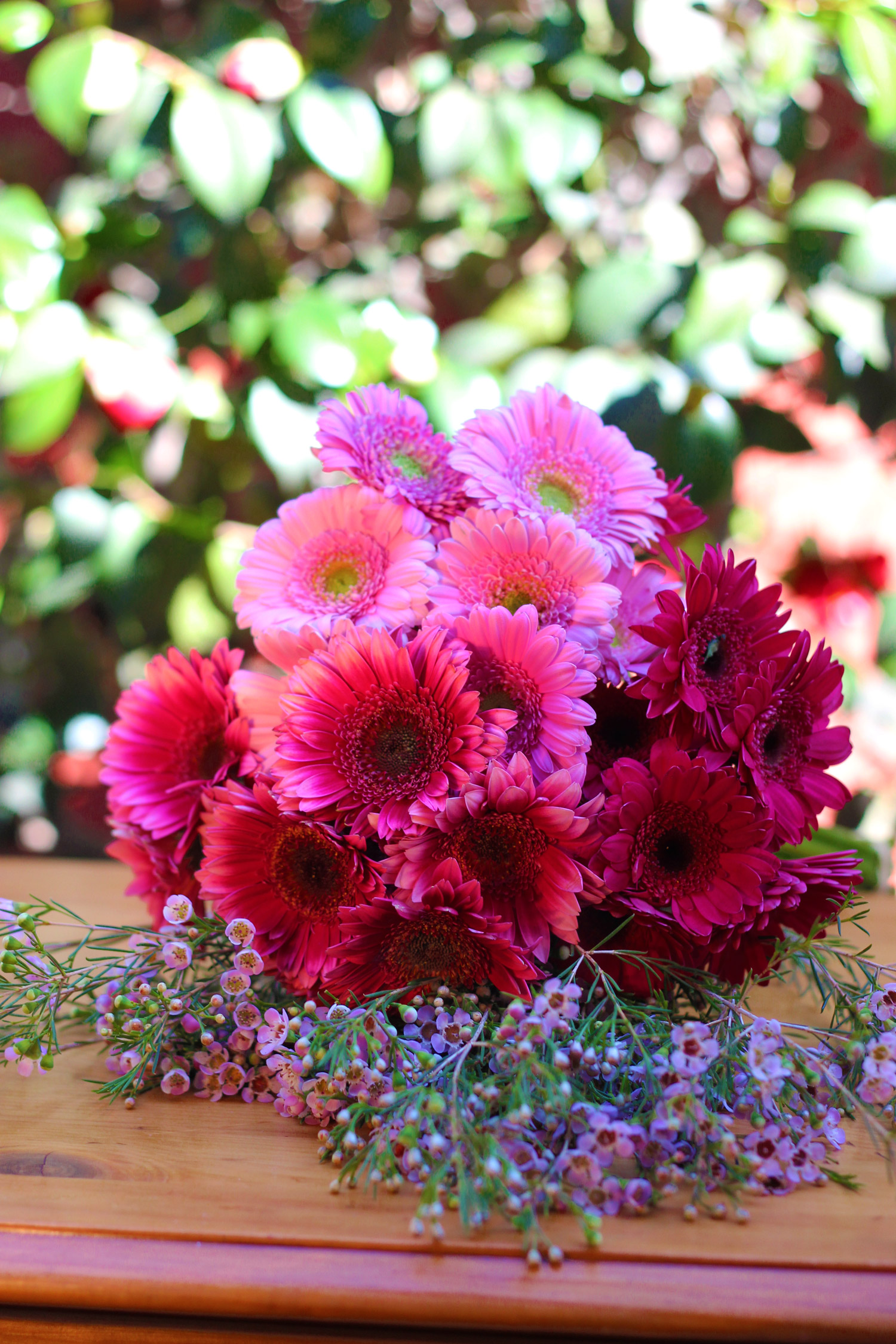 You sill use pink Wax Flower and pink Gerbers.