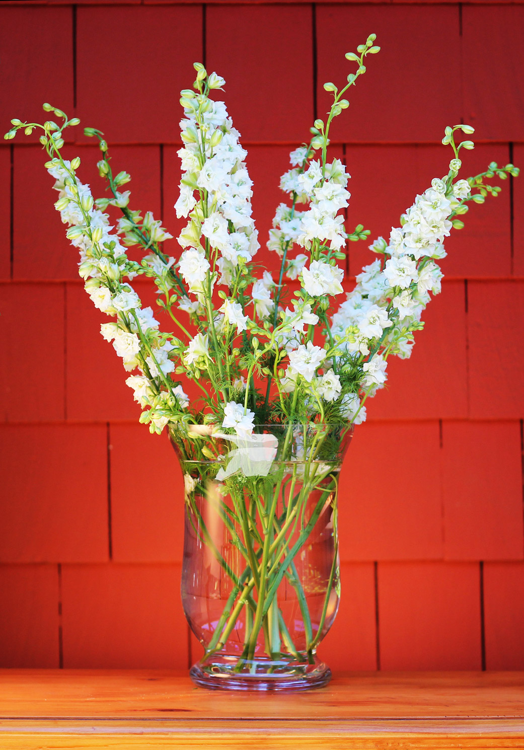 Put Larkspur into vase going out at and angle on each side, in front, and in back.