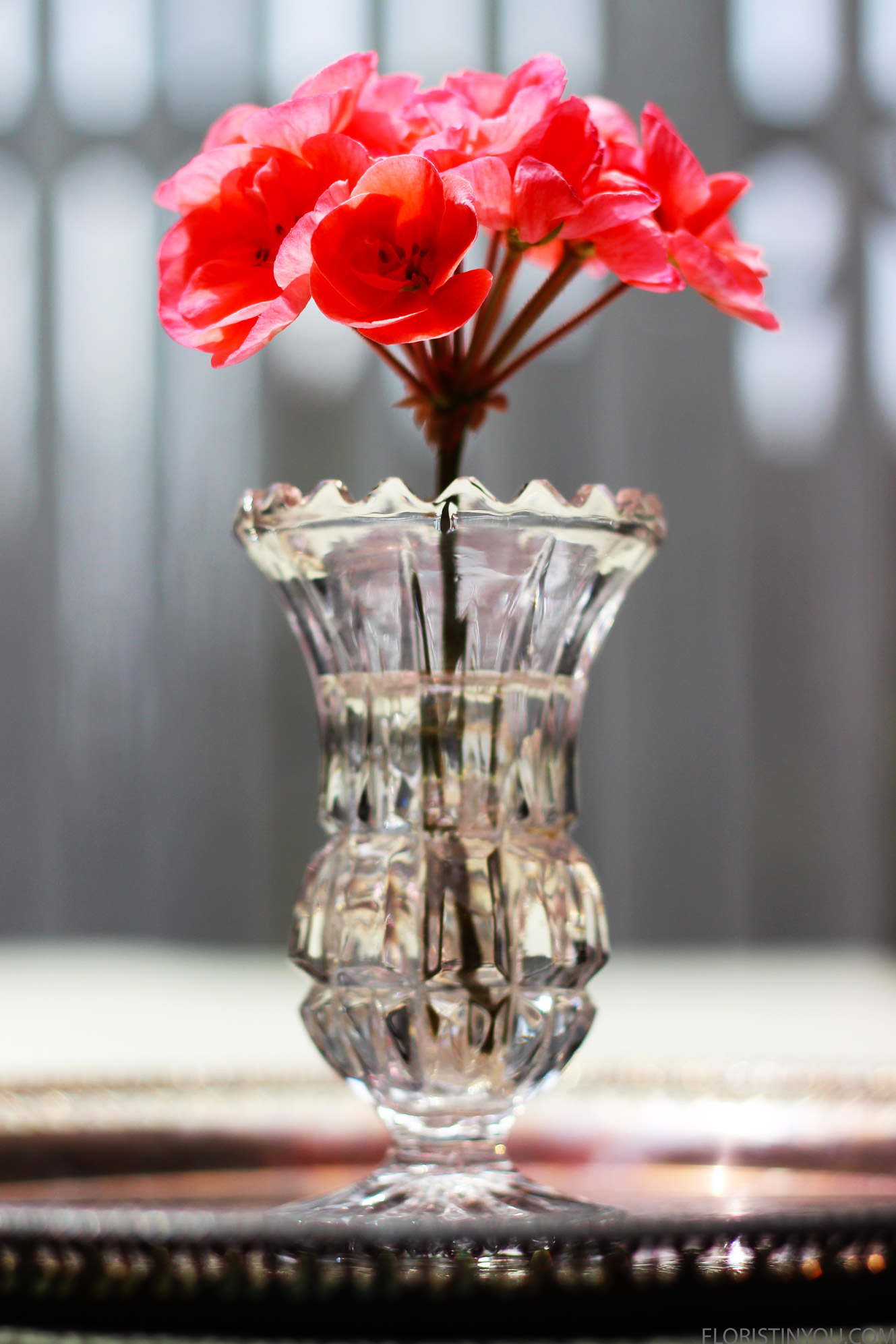 """Place a geranium stem with the bottom of the bloom 1"""" above the top of the vase."""