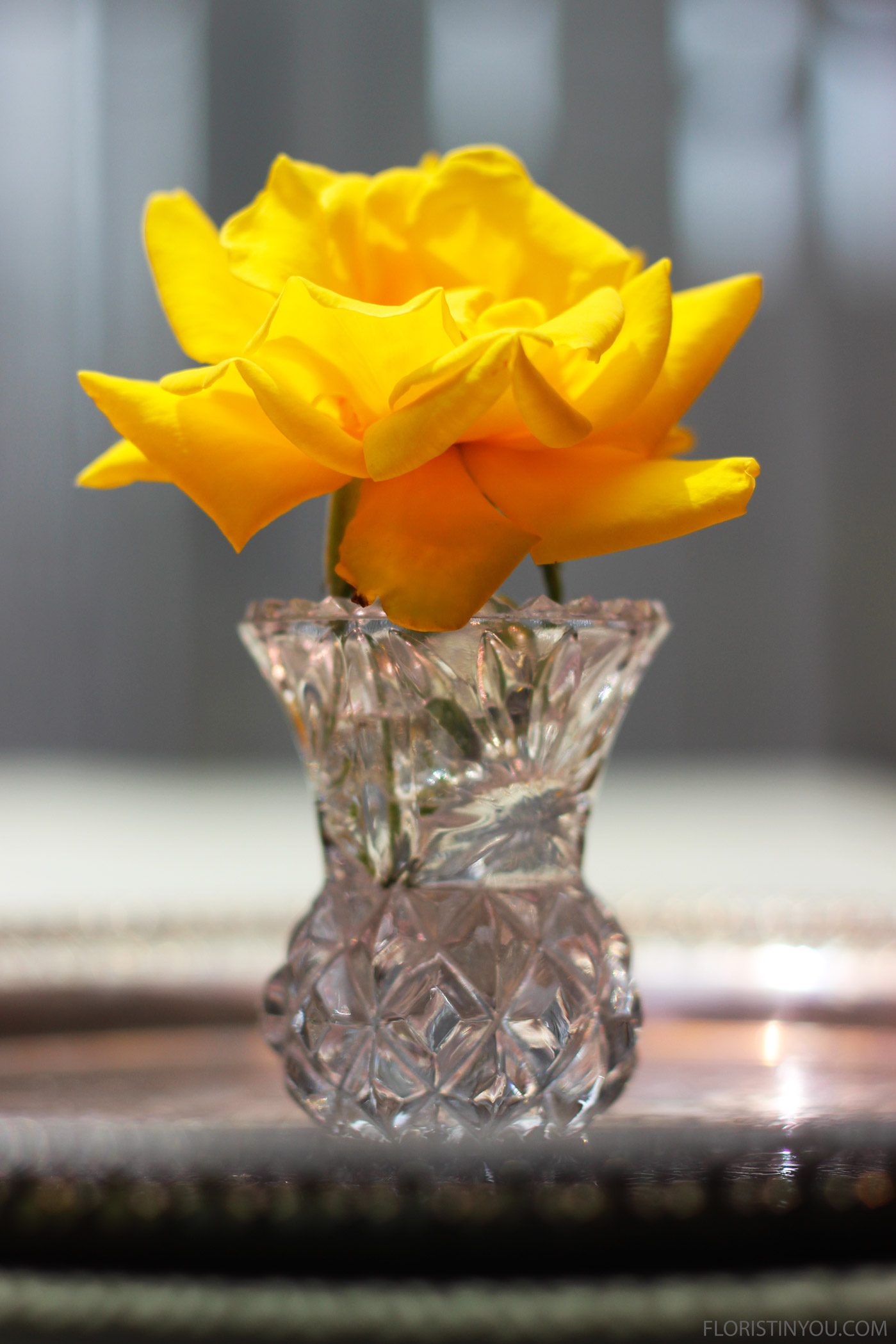 Put a small bloom in a 2.5 inch micro crystal vase. This is a small rose.