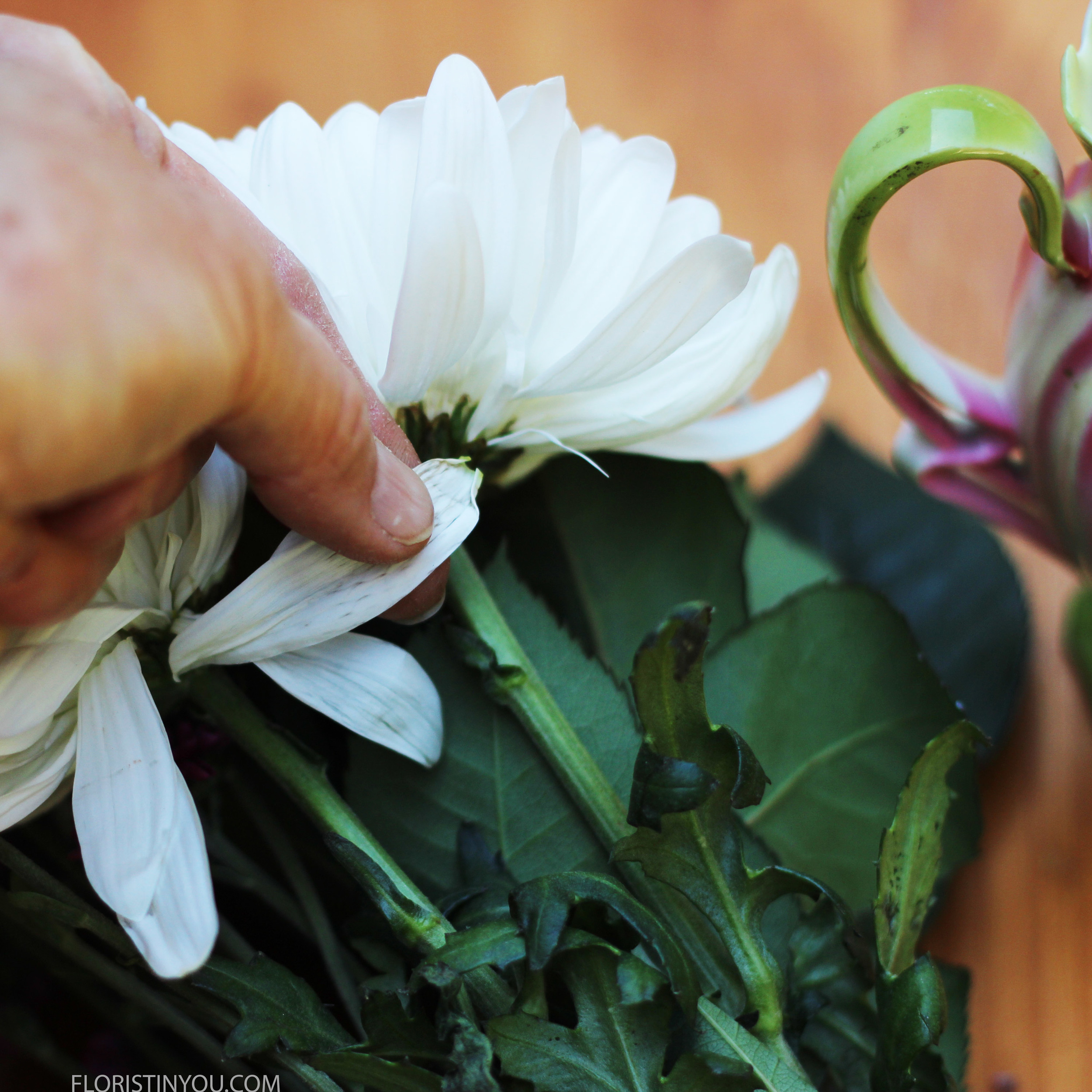 Carefully pull off any straggling petals.