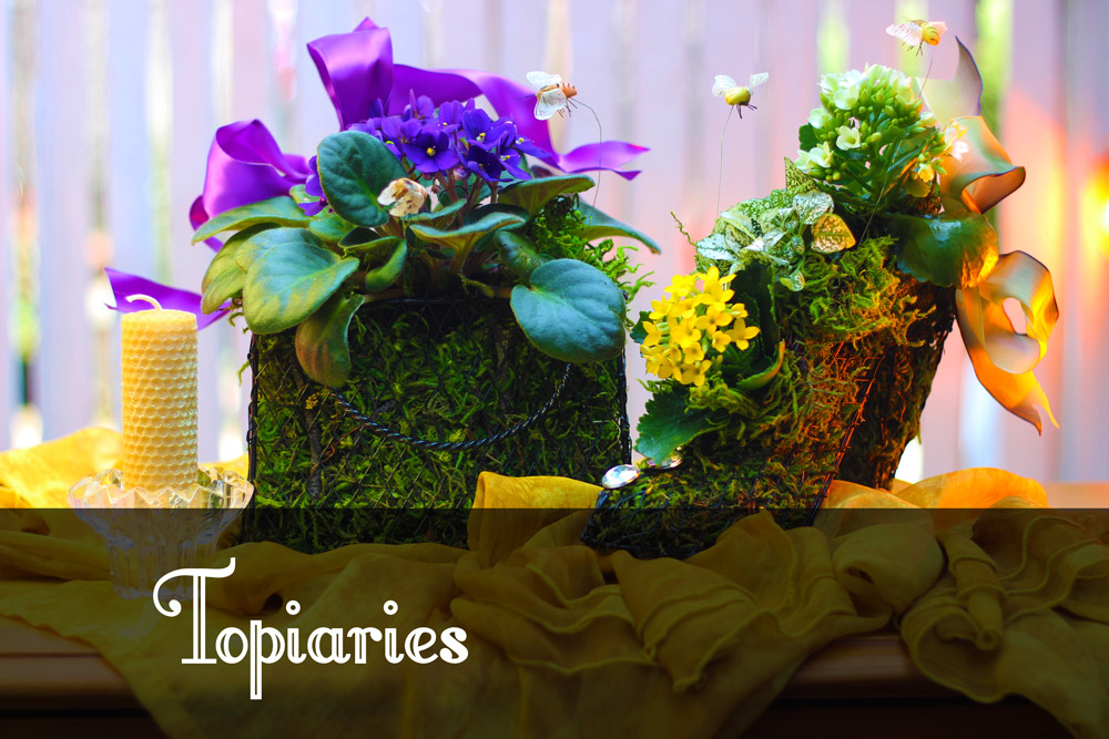 What is a Topiaries