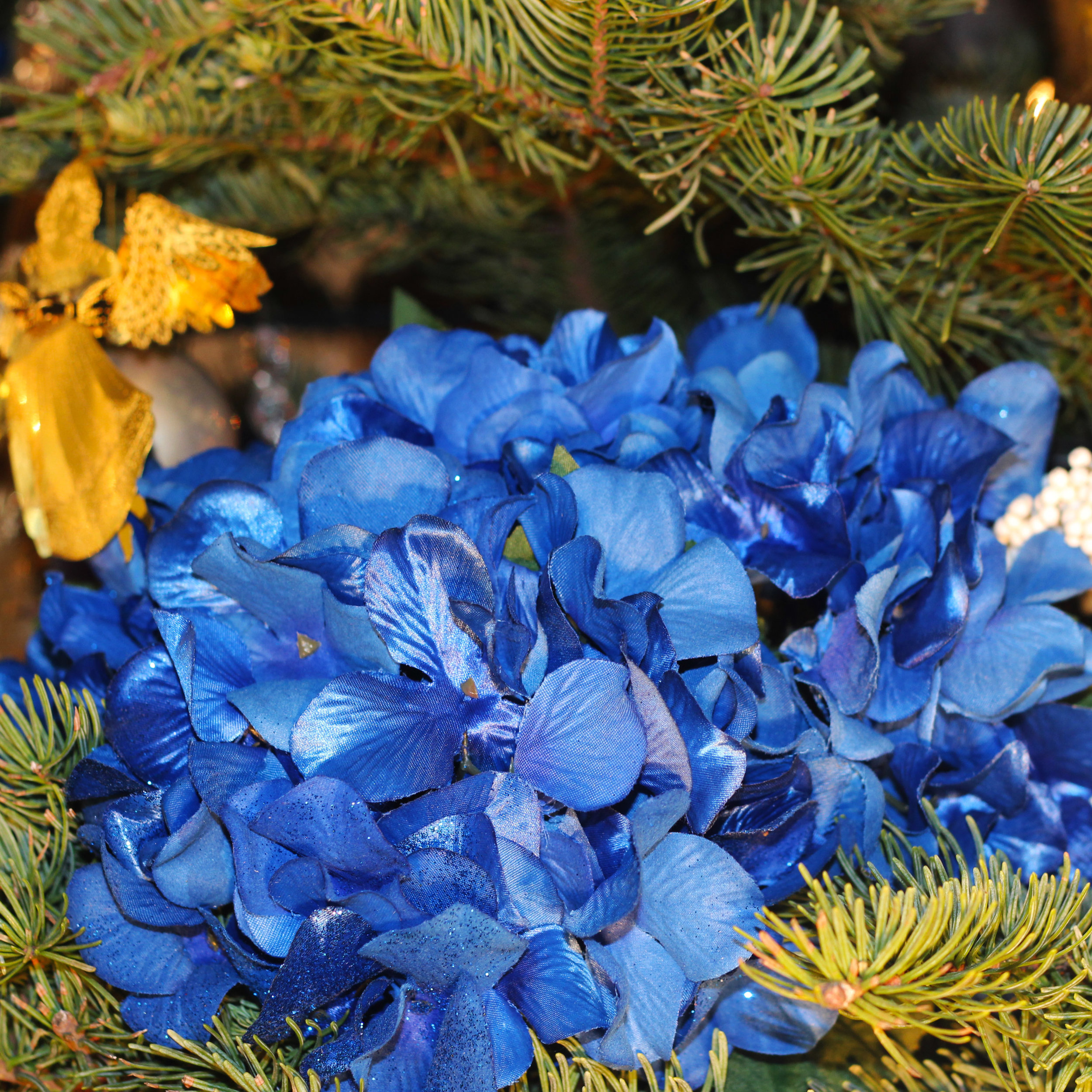 Next lay the hydrangeas on top of the boughs.