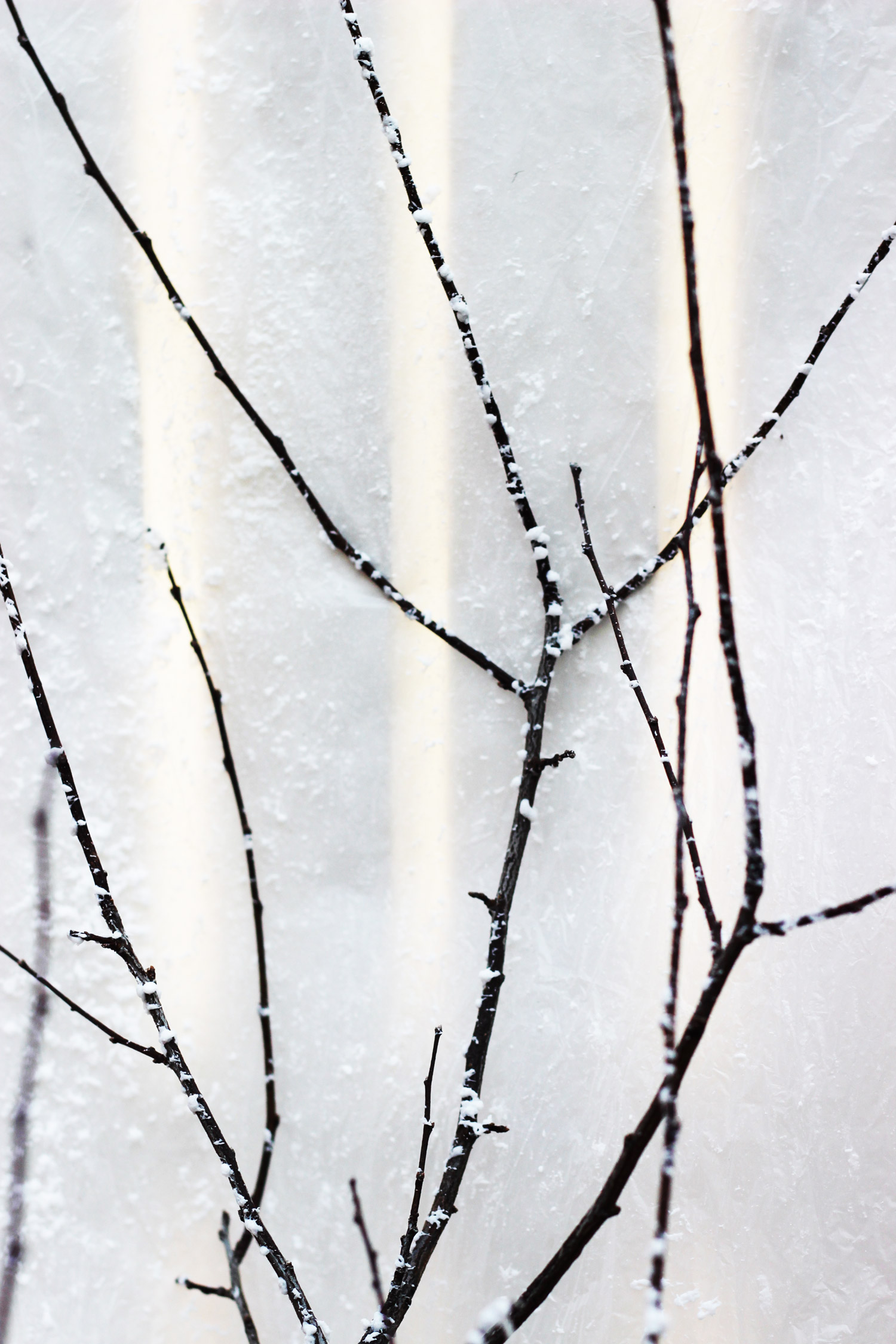 After you spray the 'snow' on let it dry and your snowy branches are ready to use in an arrangement.