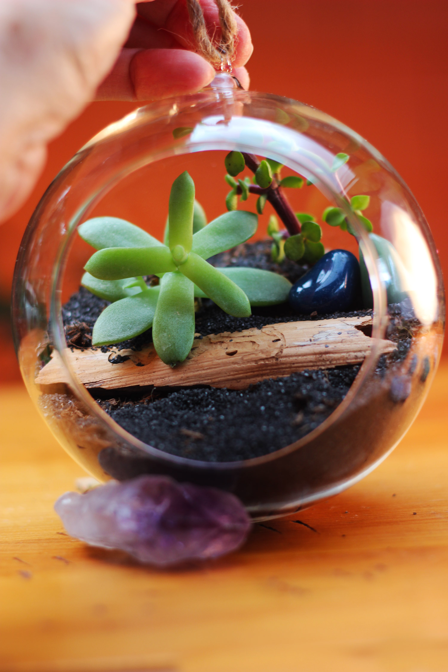 Next, plant 2 vertical succulents and put in a couple colored polished stones.