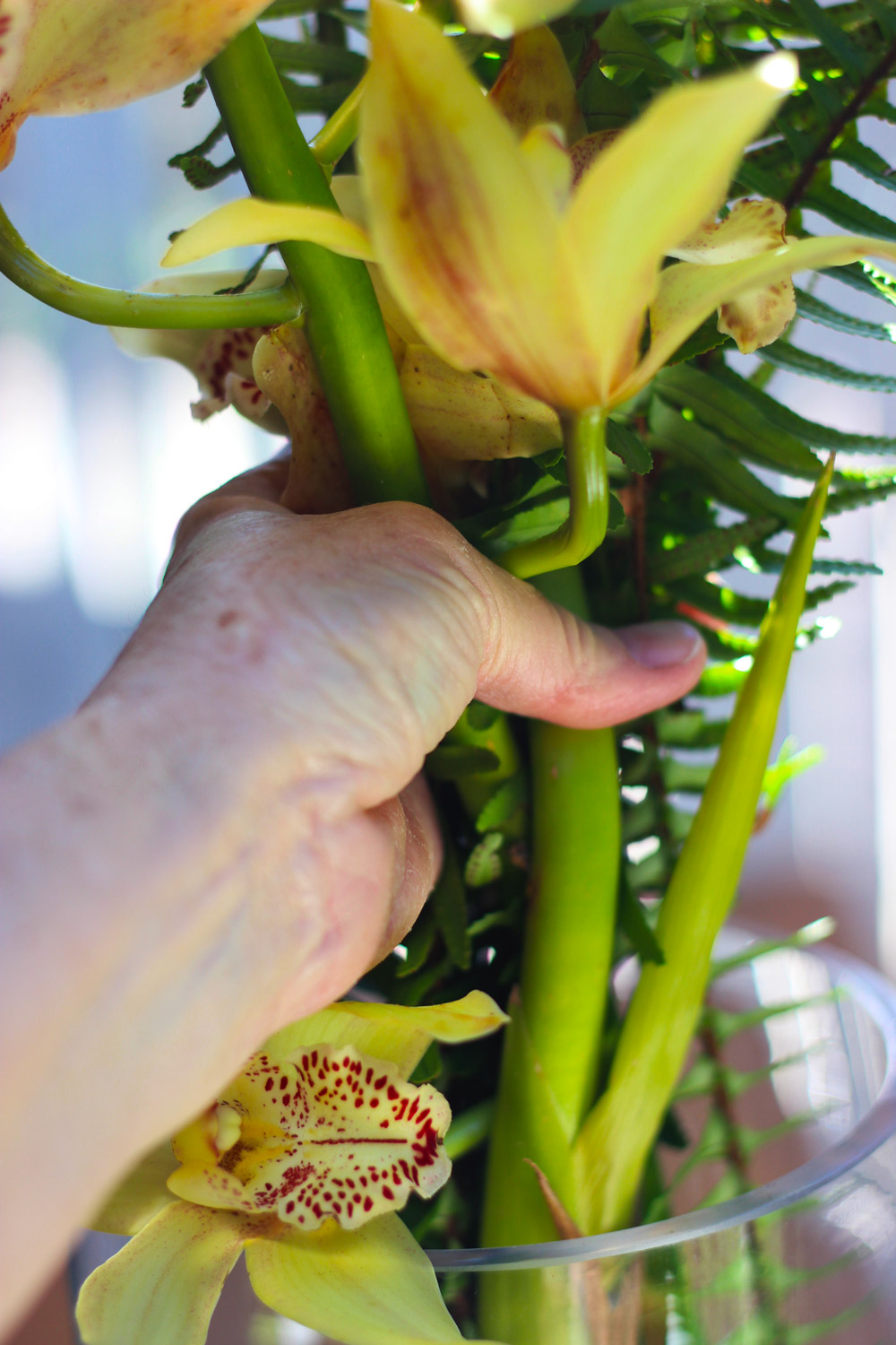 Make a grouping of yellow orchids and ferns in your hand.