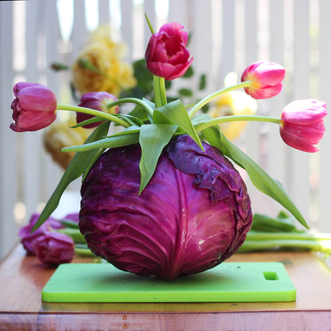 Cut tulips and place 5 in cabbage.