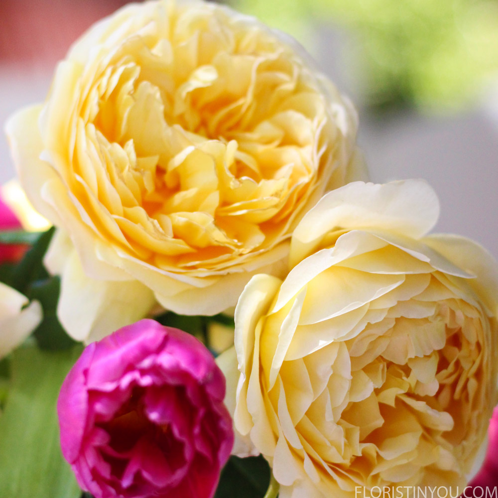 The David Austin roses are lusious.