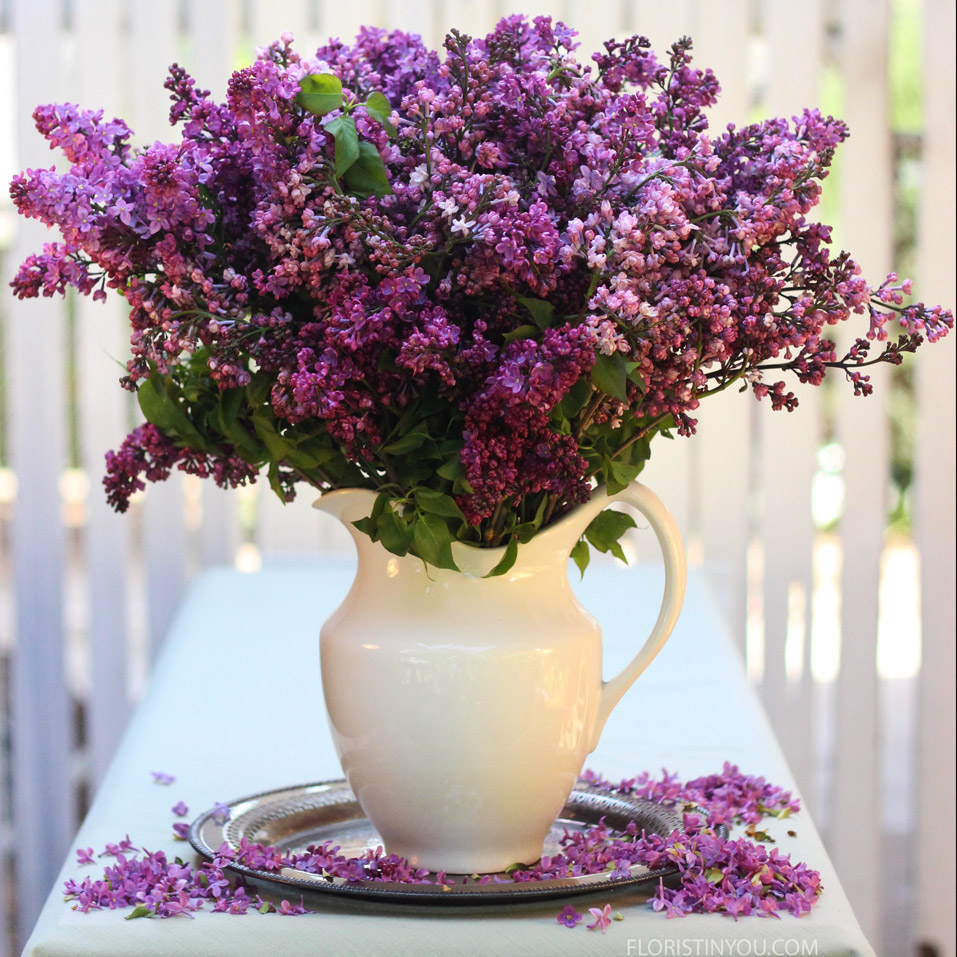 "Lovely Lilacs                     Normal   0           false   false   false     EN-US   JA   X-NONE                                                                                                                                                                                                                                                                                                                                                                              /* Style Definitions */ table.MsoNormalTable 	{mso-style-name:""Table Normal""; 	mso-tstyle-rowband-size:0; 	mso-tstyle-colband-size:0; 	mso-style-noshow:yes; 	mso-style-priority:99; 	mso-style-parent:""""; 	mso-padding-alt:0in 5.4pt 0in 5.4pt; 	mso-para-margin:0in; 	mso-para-margin-bottom:.0001pt; 	mso-pagination:widow-orphan; 	font-size:12.0pt; 	font-family:Cambria; 	mso-ascii-font-family:Cambria; 	mso-ascii-theme-font:minor-latin; 	mso-hansi-font-family:Cambria; 	mso-hansi-theme-font:minor-latin;}"