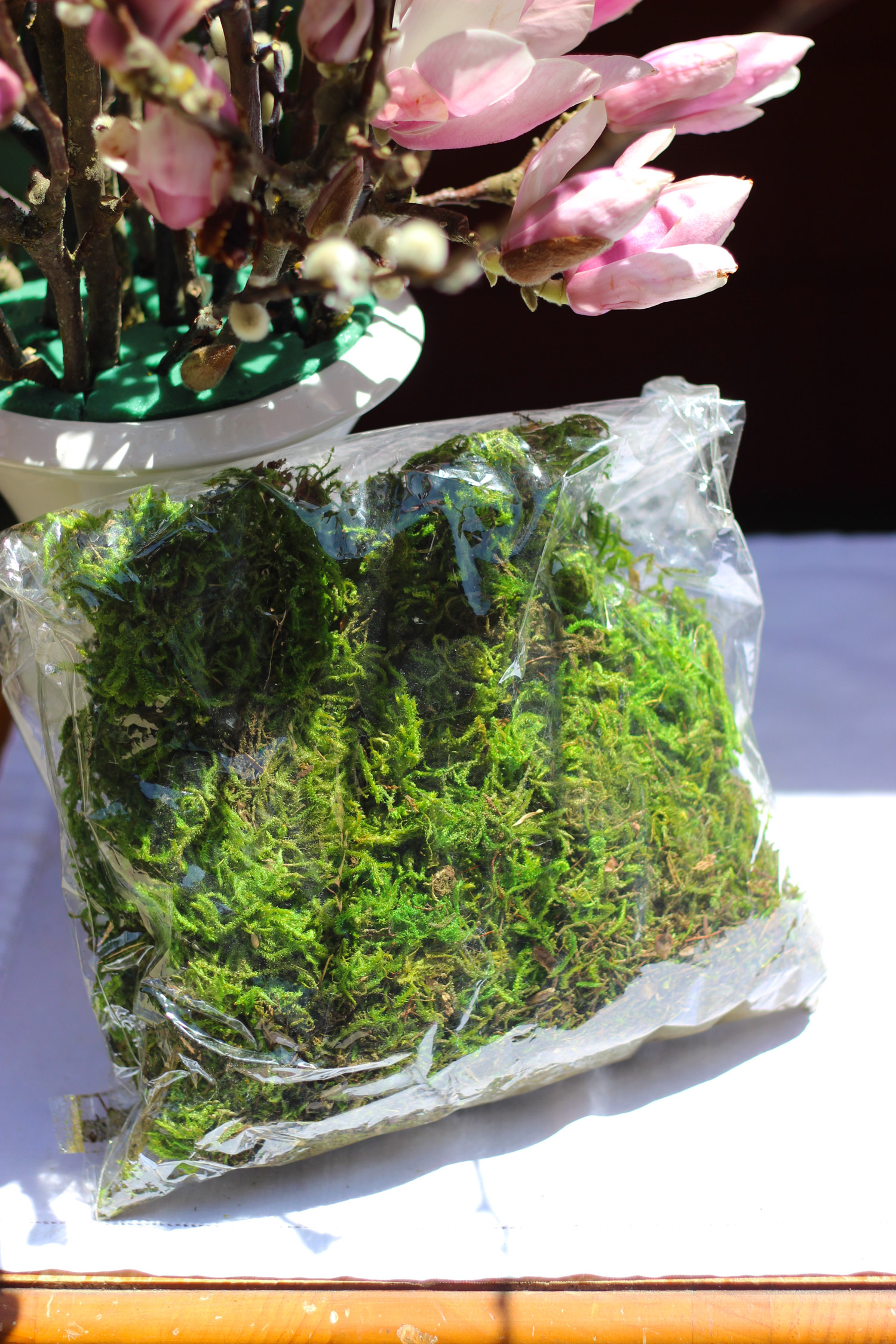 Use Reindeer Moss around top of vase to cover foam.