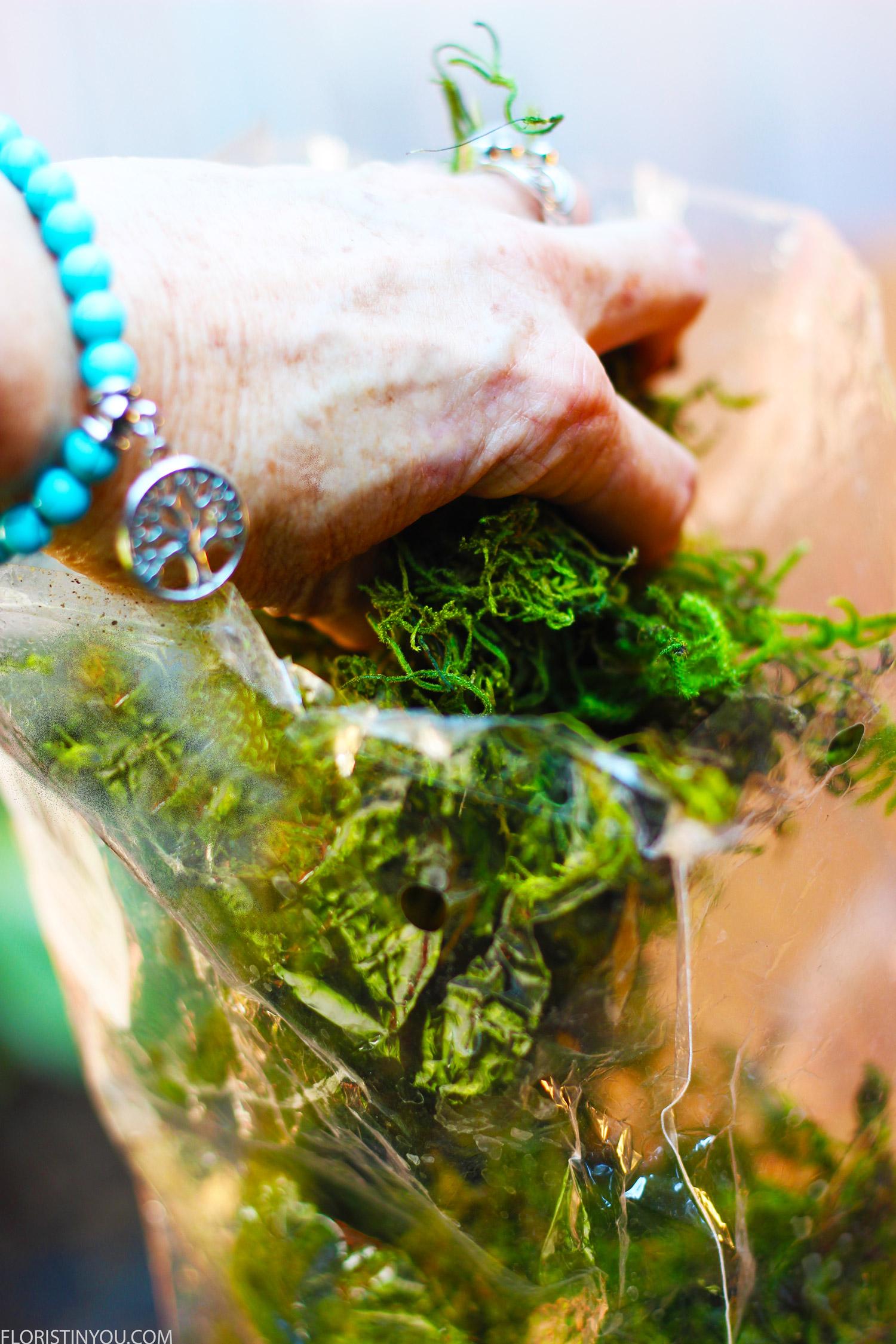 Grab some moss.