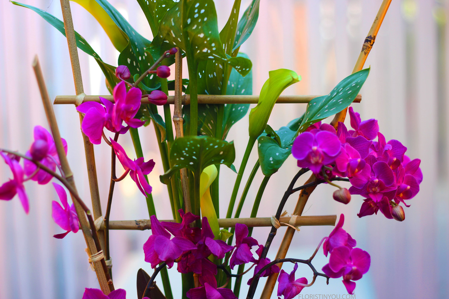 Cut bamboo pieces to support all stems. Tie each orchid stem to bamboo with raffia. Double knot. Trim close.