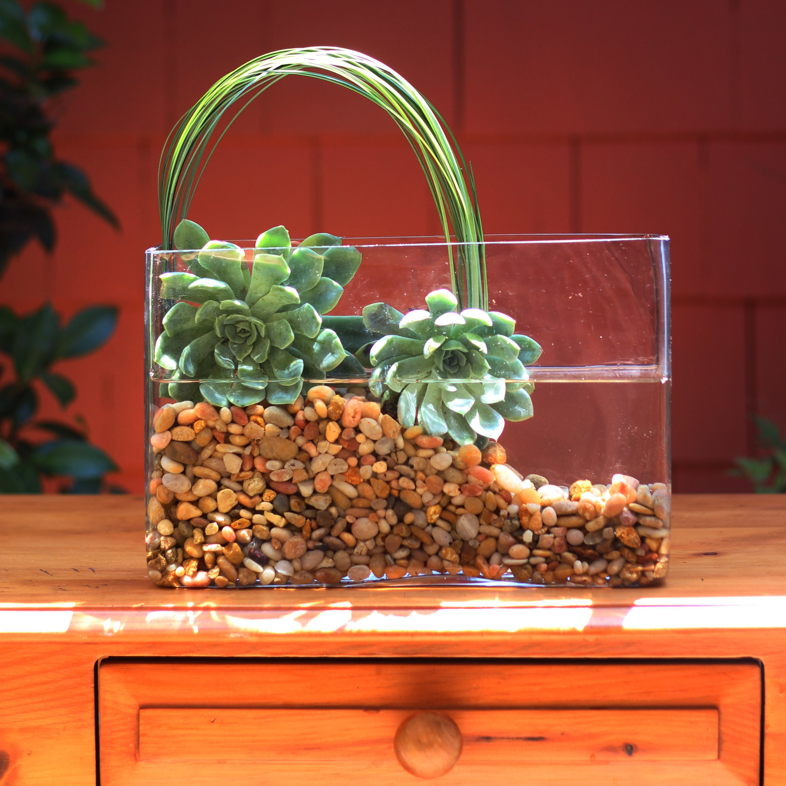 Push ends of grass down with a chopstick. Low arch goes from 2nd succulent to corner.