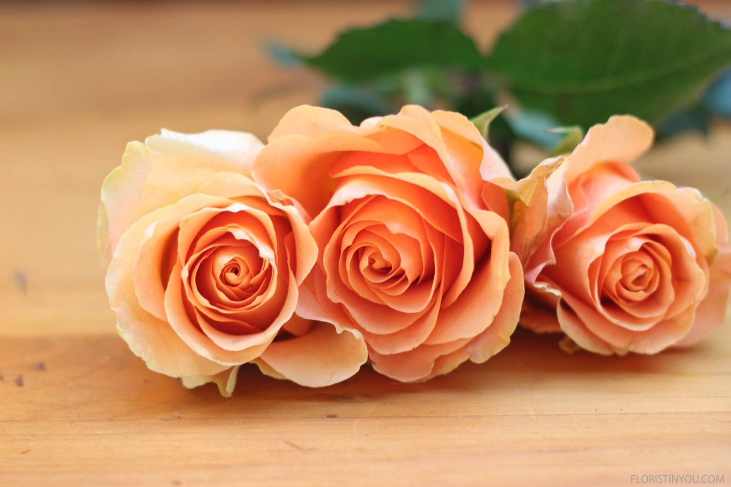 Use 6 large orange roses.  Wire them with one third piece of 18 gauge floral wire.