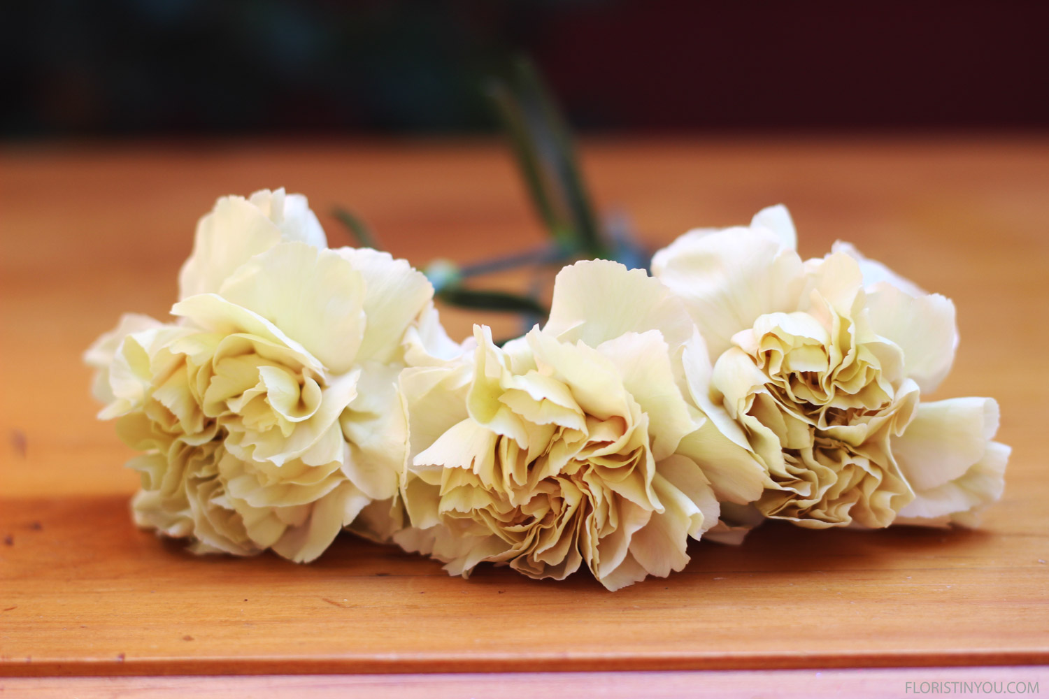 You will also use Putumayo Fancy Carnations...