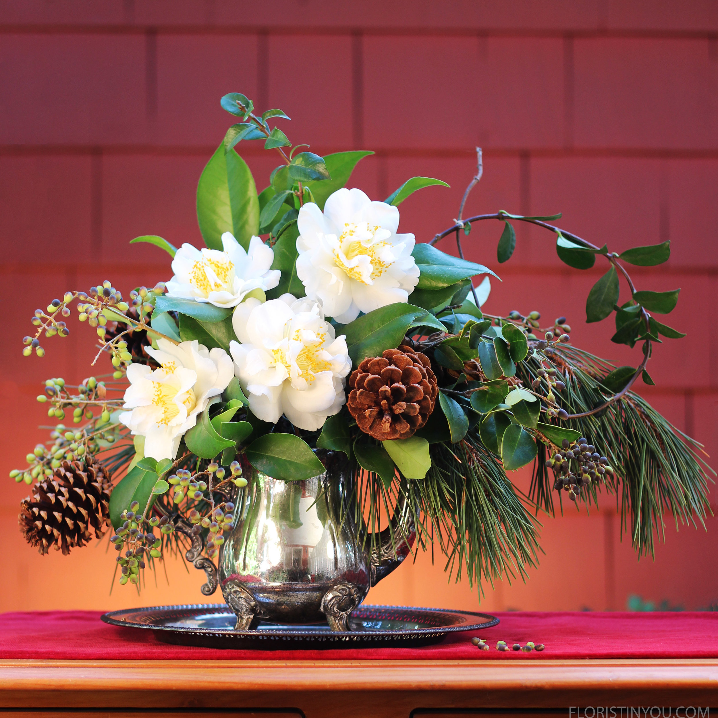"""Christmas Cuttings from my Yard                     Normal   0           false   false   false     EN-US   JA   X-NONE                                                                                                                                                                                                                                                                                                                                                                              /* Style Definitions */ table.MsoNormalTable {mso-style-name:""""Table Normal""""; mso-tstyle-rowband-size:0; mso-tstyle-colband-size:0; mso-style-noshow:yes; mso-style-priority:99; mso-style-parent:""""""""; mso-padding-alt:0in 5.4pt 0in 5.4pt; mso-para-margin:0in; mso-para-margin-bottom:.0001pt; mso-pagination:widow-orphan; font-size:12.0pt; font-family:Cambria; mso-ascii-font-family:Cambria; mso-ascii-theme-font:minor-latin; mso-hansi-font-family:Cambria; mso-hansi-theme-font:minor-latin;}"""