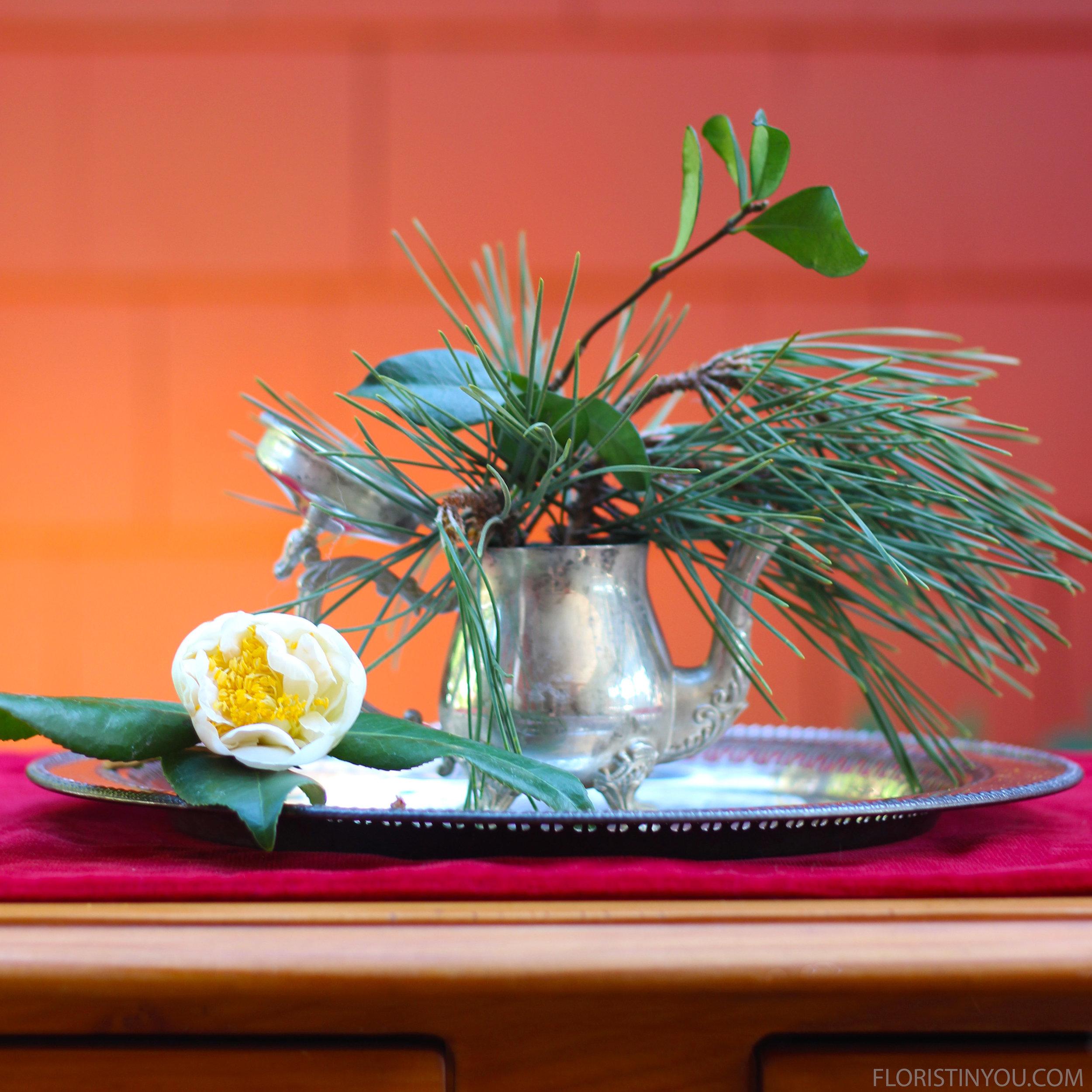 For the tiny tea pot, insert Pine and Jasmin.