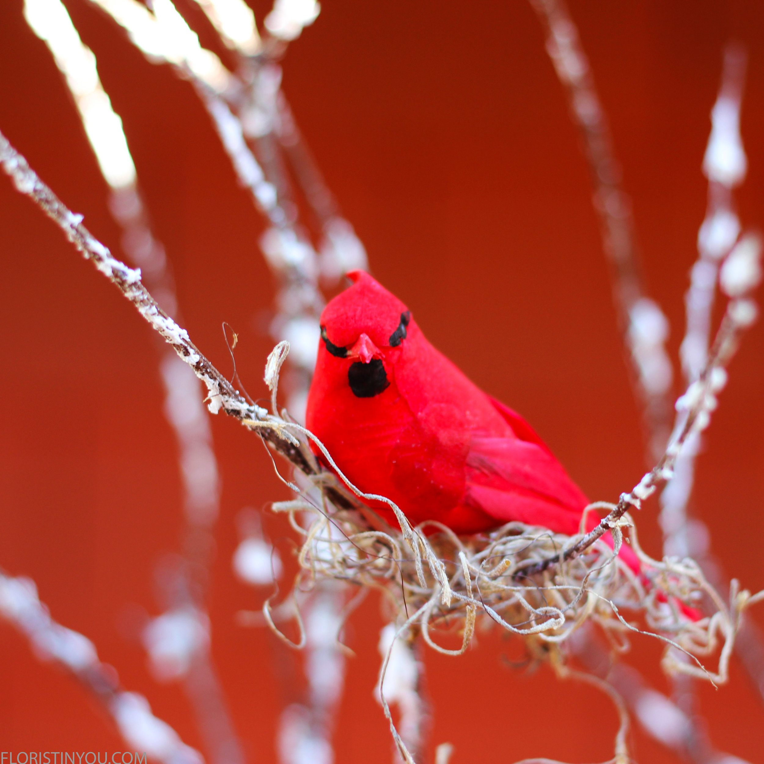Add pinch of Spanish Moss and glue 2 birds onto branches.