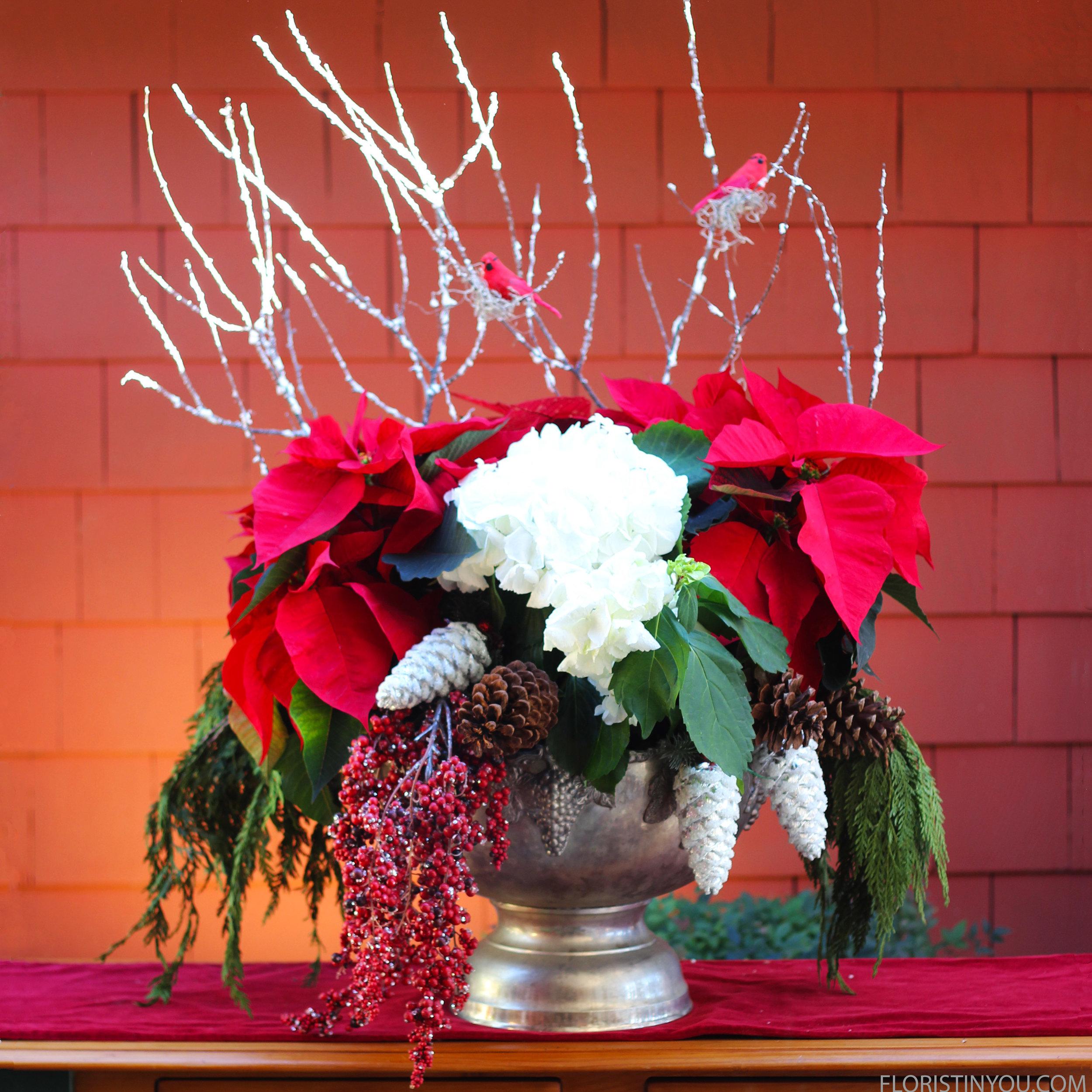 Christmas Poinsettias and Hydrangea