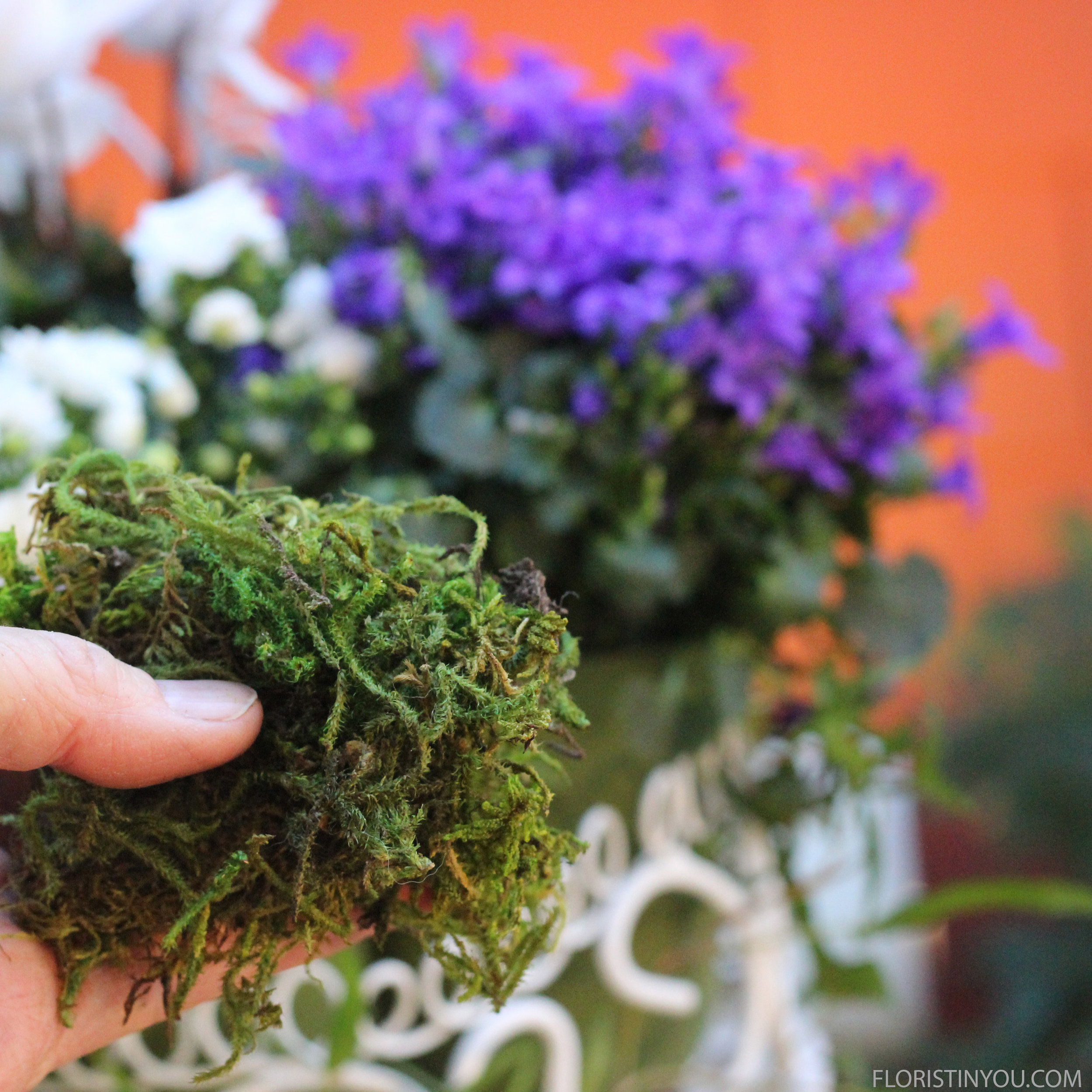 Add Reindeer moss around containers.