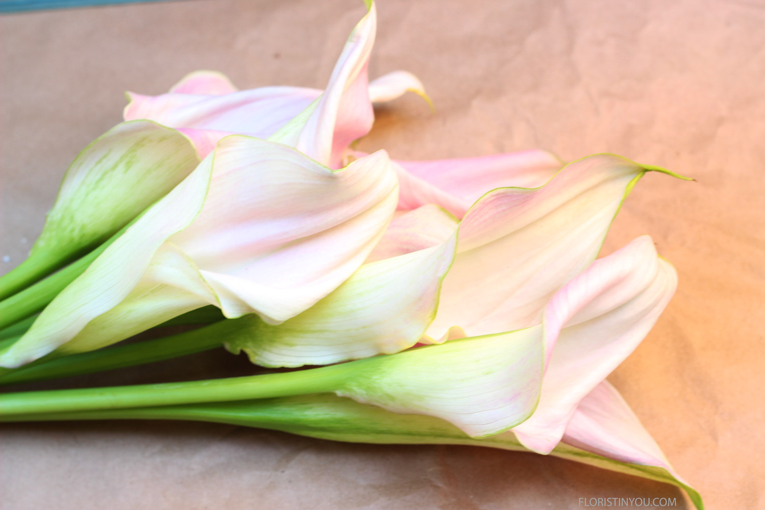 Arrange Calla Lilies so they extend out to the right, like so.