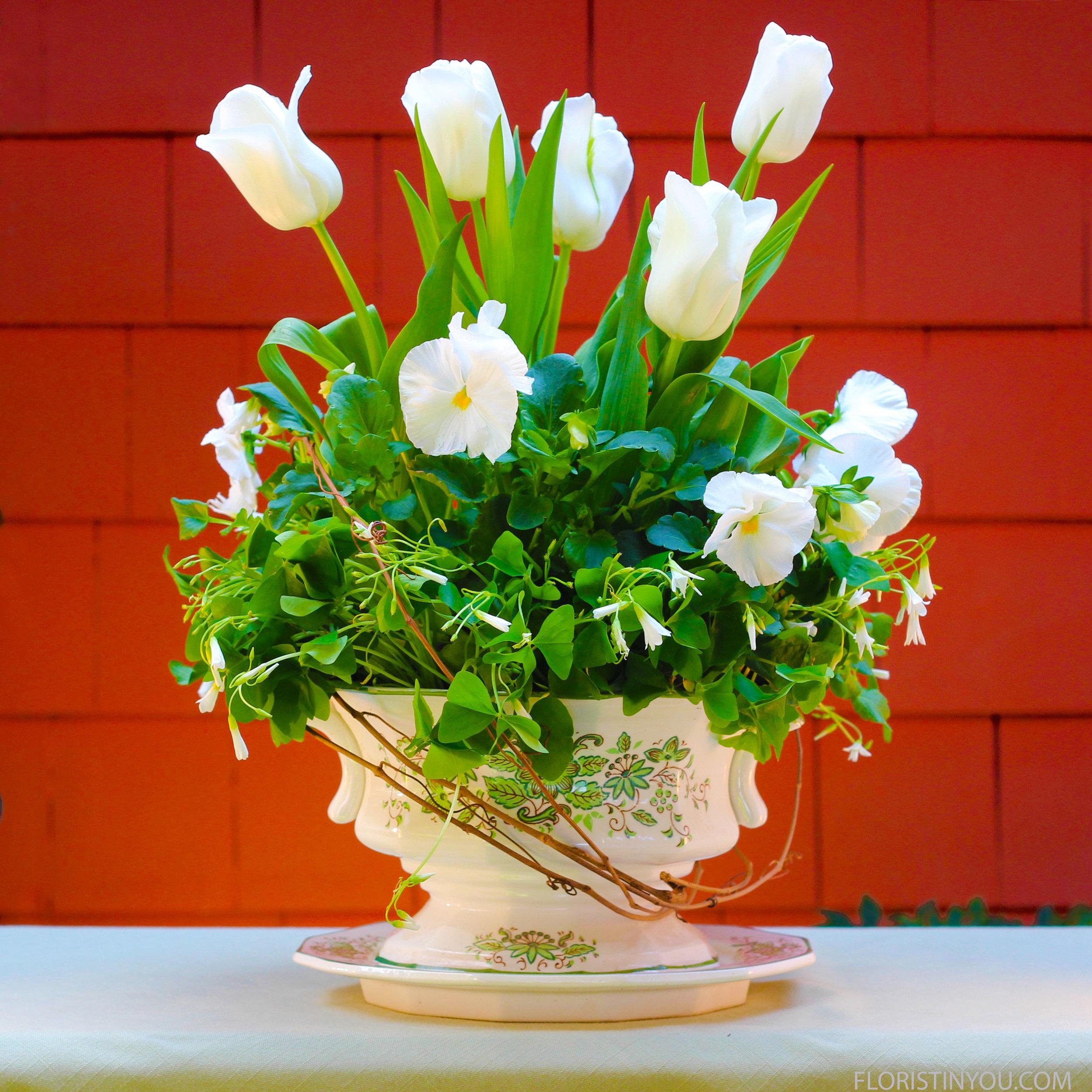 Shamrocks & Tulips