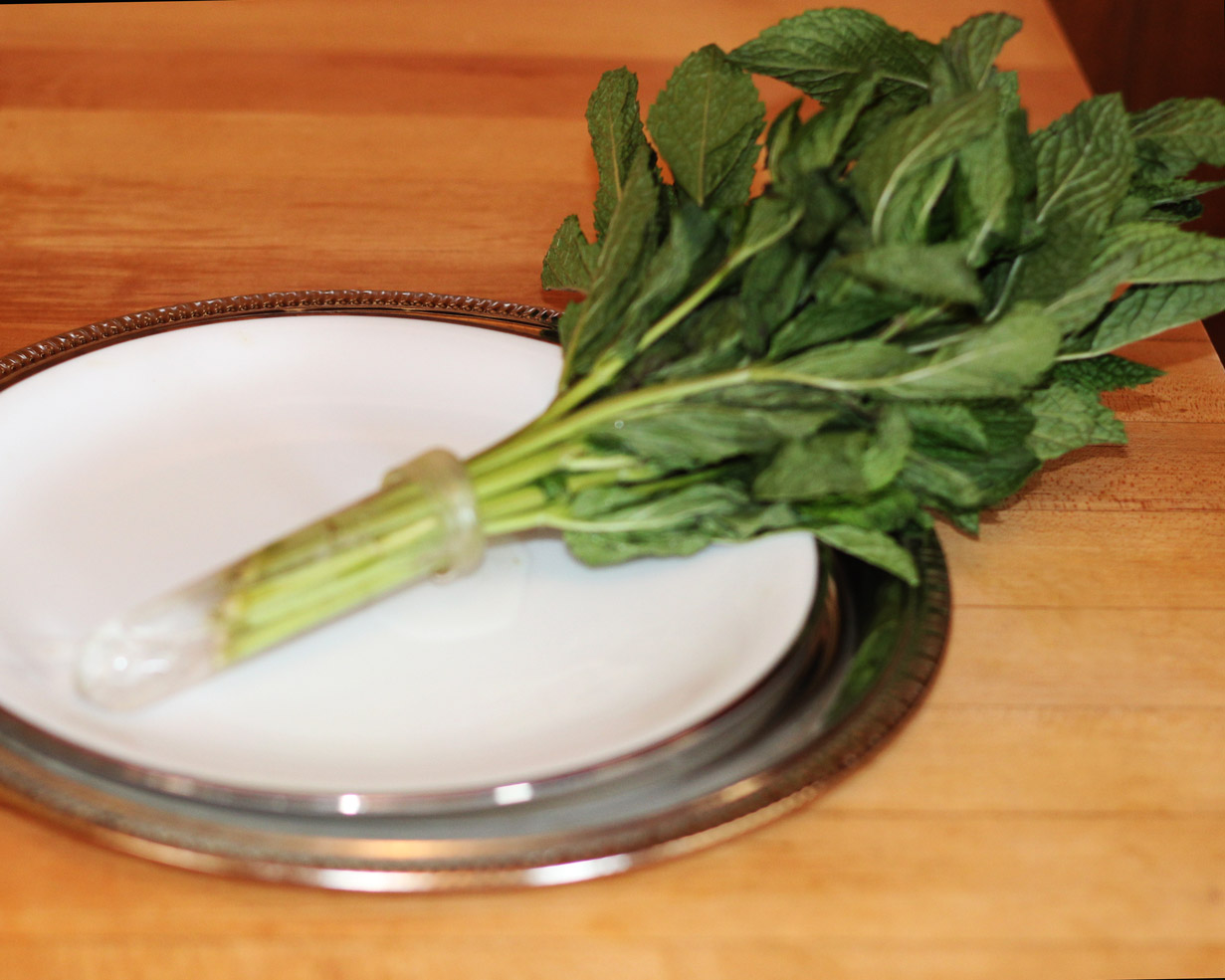 Put bunch of mint into large vial with water. Make 2.