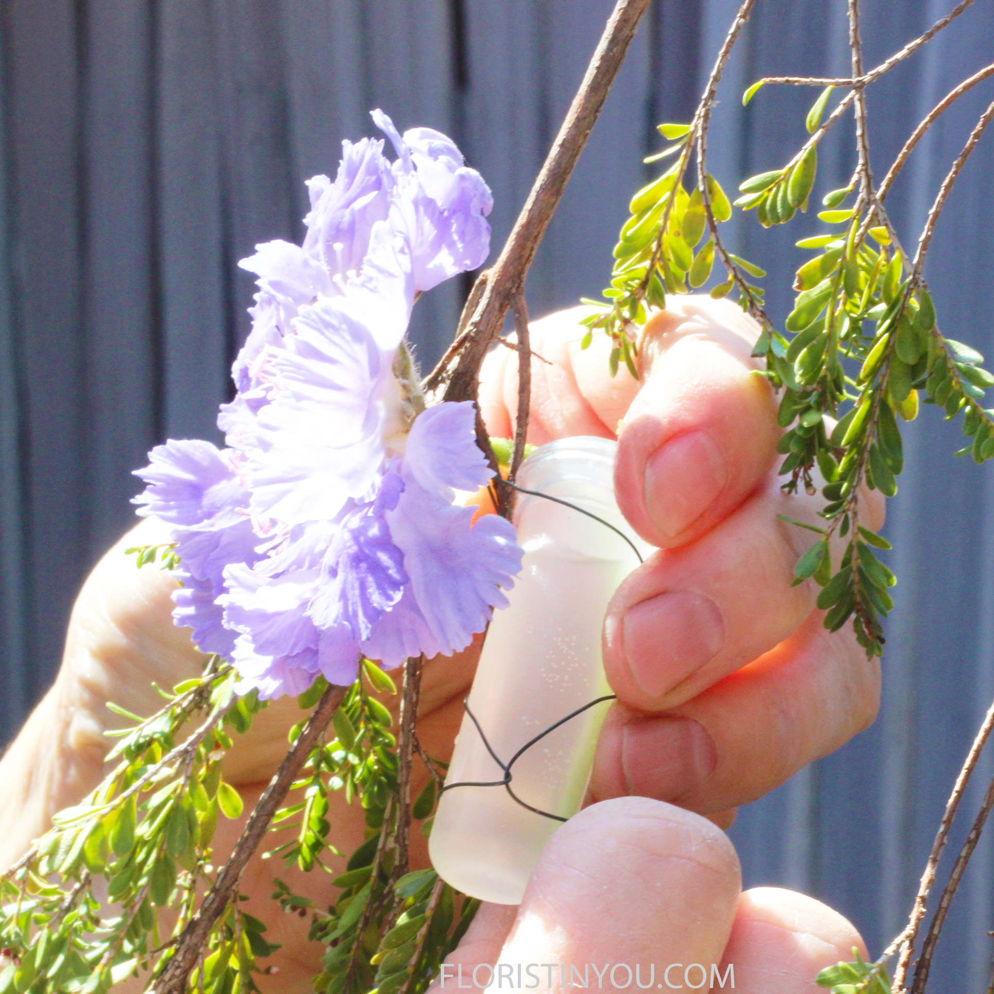 Tube 3-4 blue Scabiosa in vial with water. Wire into Bouquet so tube is hidden.