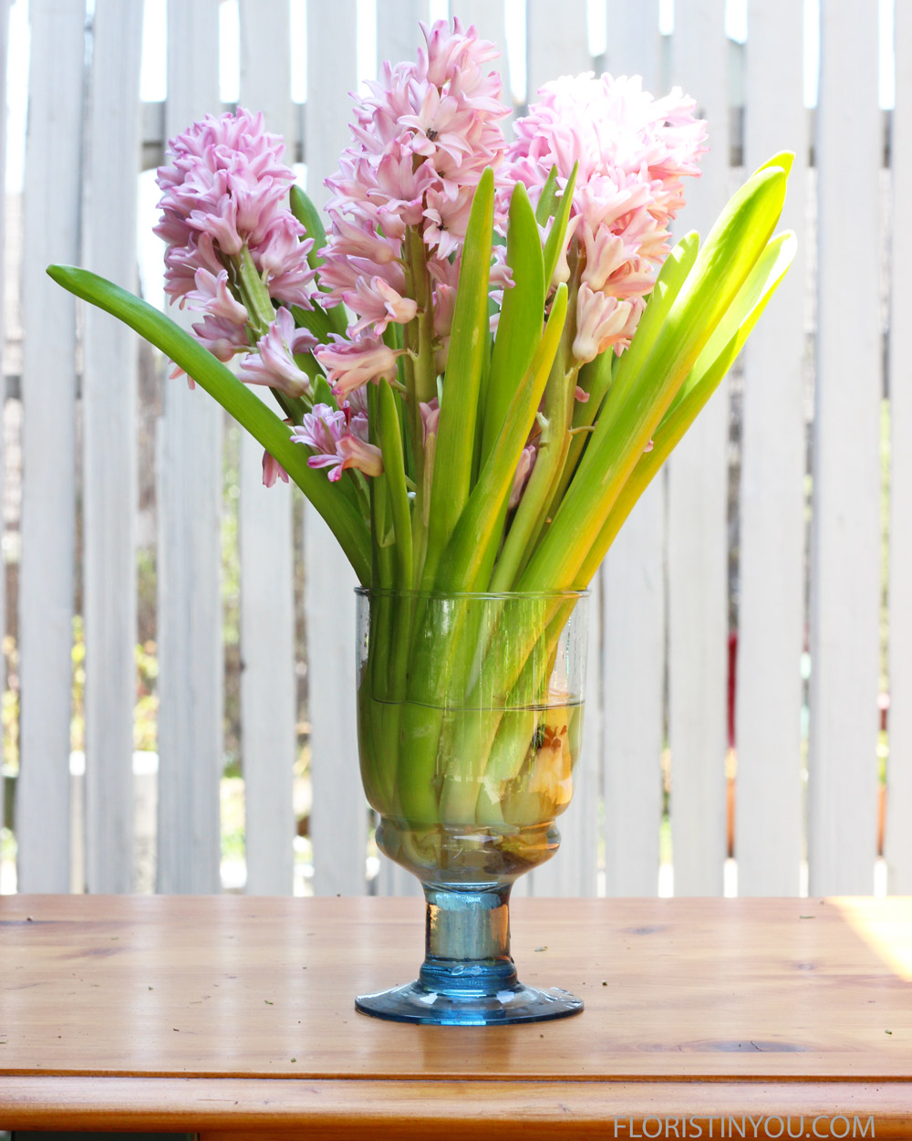 Take a few individual flowers off Hyacinth.