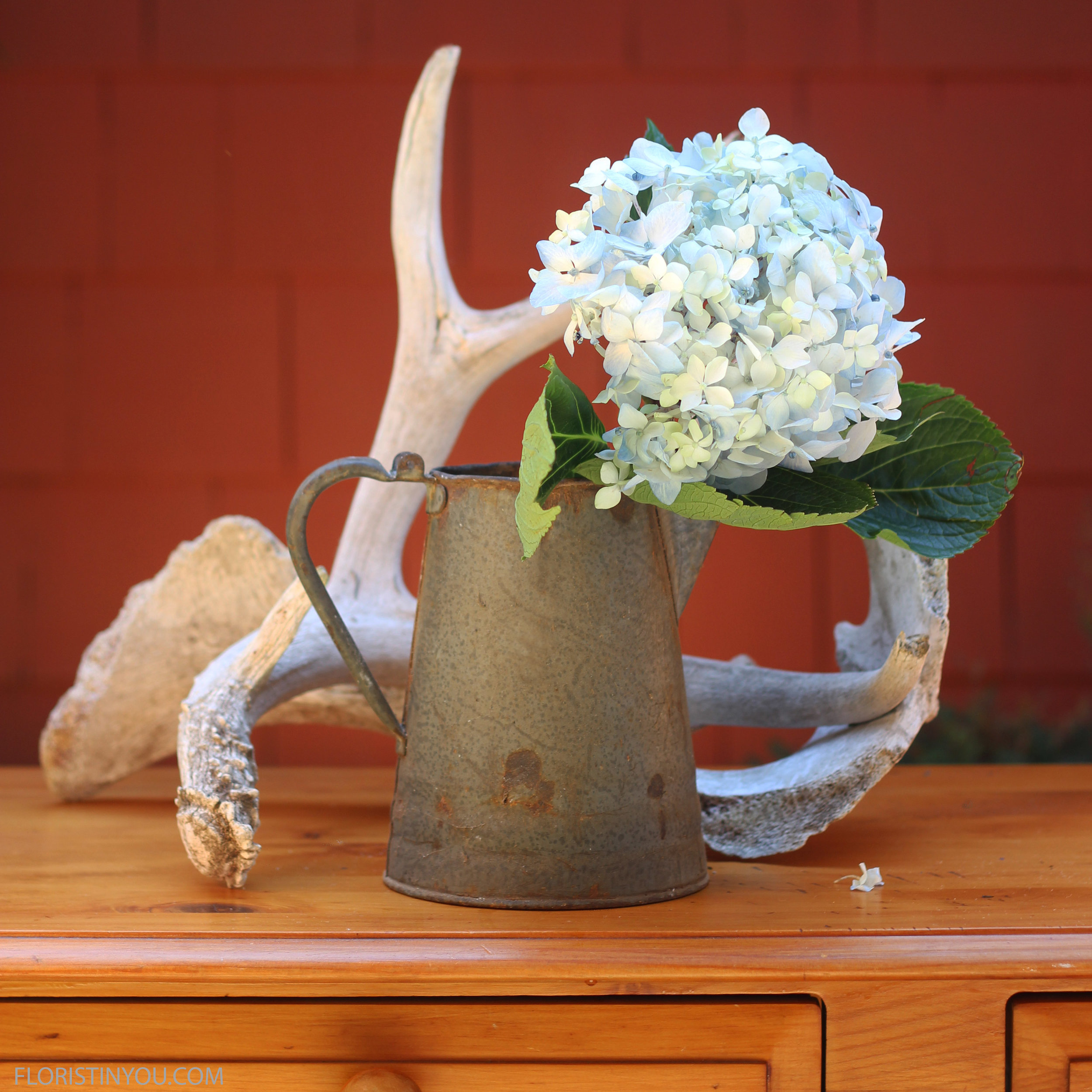 Start with the Hydrangea right front.