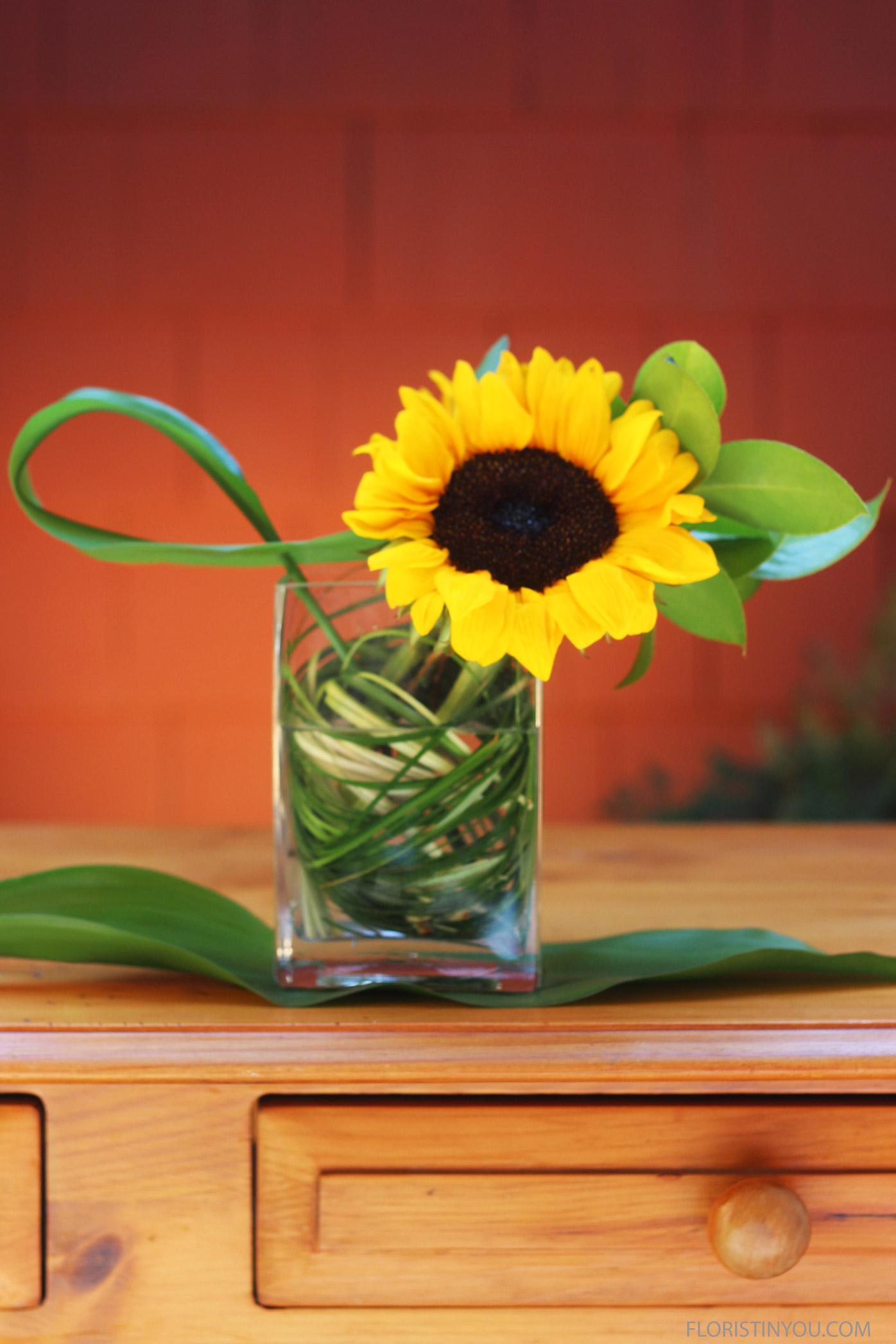"Sunflowers in a Rectangular Vase                     Normal   0           false   false   false     EN-US   JA   X-NONE                                                                                                                                                                                                                                                                                                                                                                              /* Style Definitions */ table.MsoNormalTable {mso-style-name:""Table Normal""; mso-tstyle-rowband-size:0; mso-tstyle-colband-size:0; mso-style-noshow:yes; mso-style-priority:99; mso-style-parent:""""; mso-padding-alt:0in 5.4pt 0in 5.4pt; mso-para-margin:0in; mso-para-margin-bottom:.0001pt; mso-pagination:widow-orphan; font-size:12.0pt; font-family:Cambria; mso-ascii-font-family:Cambria; mso-ascii-theme-font:minor-latin; mso-hansi-font-family:Cambria; mso-hansi-theme-font:minor-latin;}"