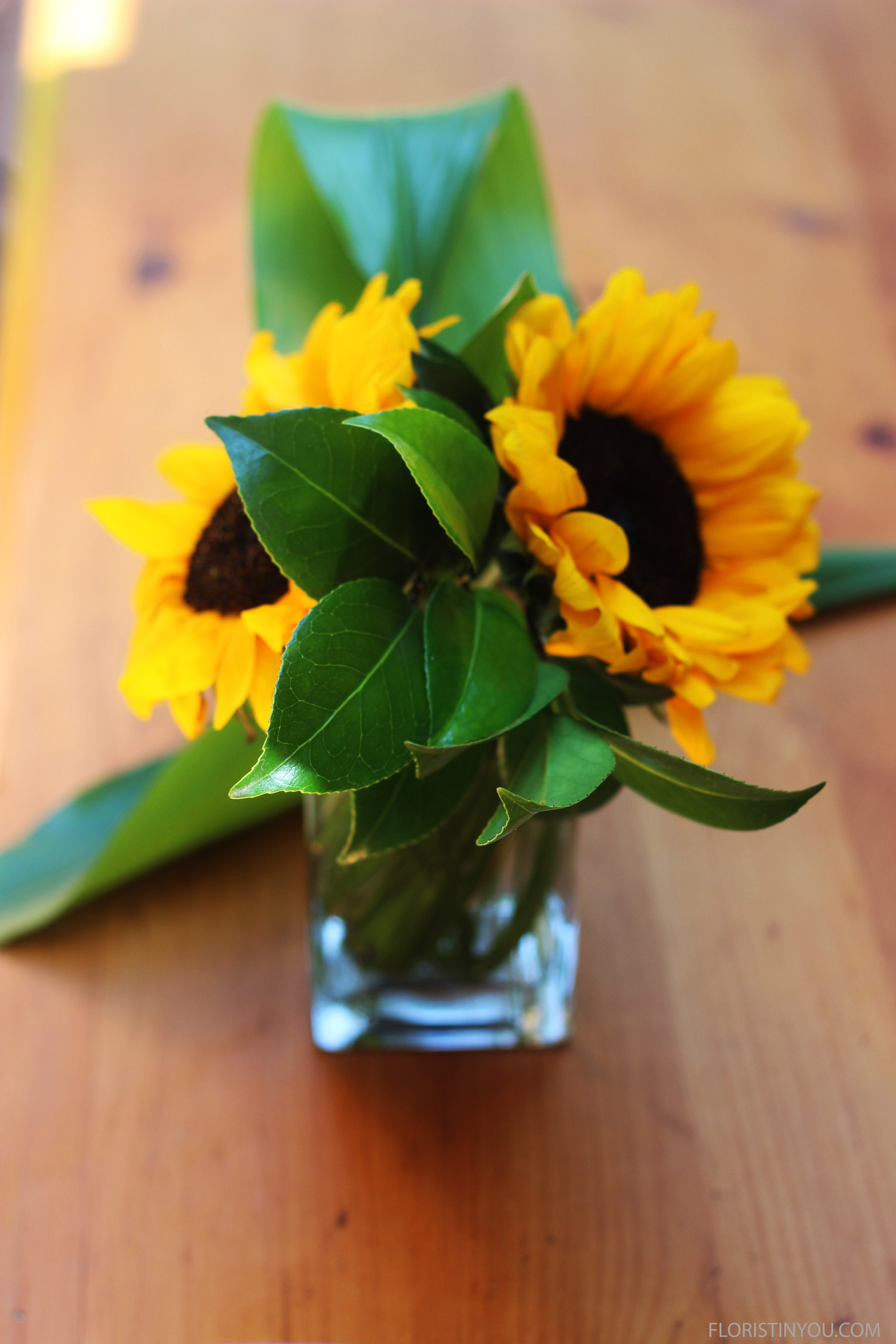Add a Sunflower to the back.