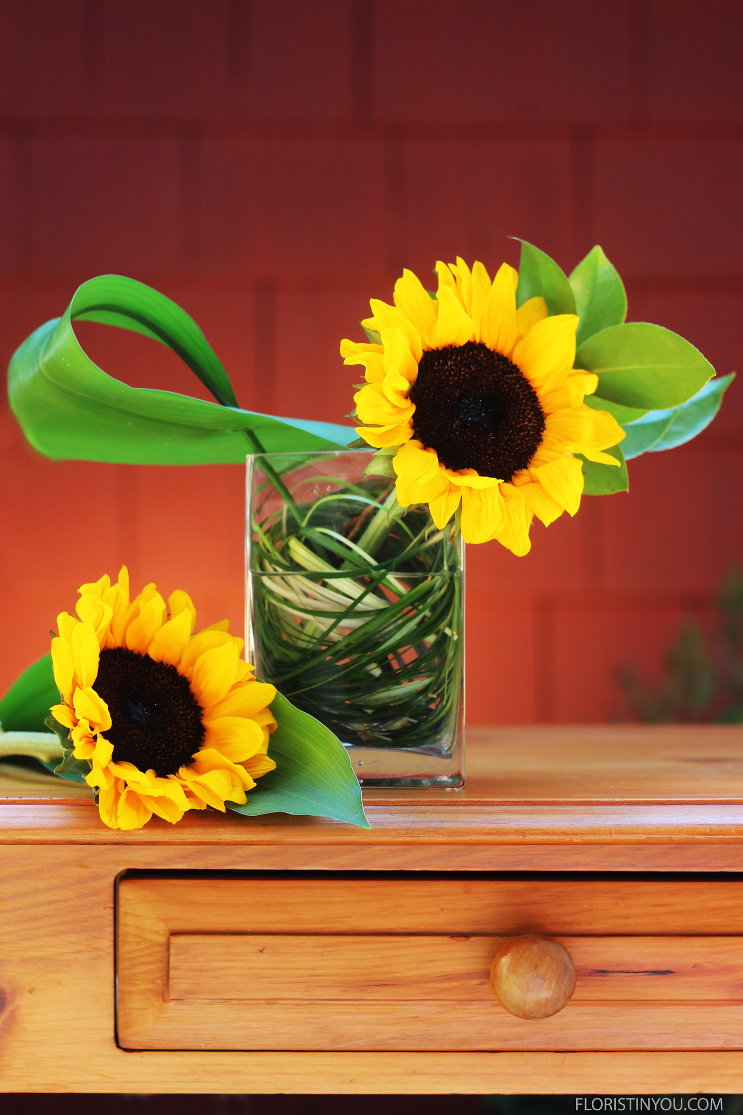 Add a Sunflower to the right.