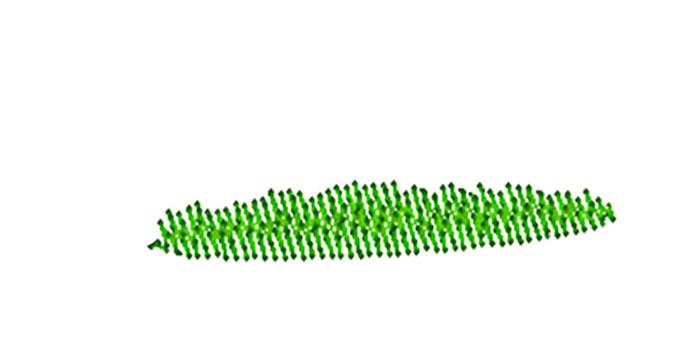 Grass-Patch-1.jpg
