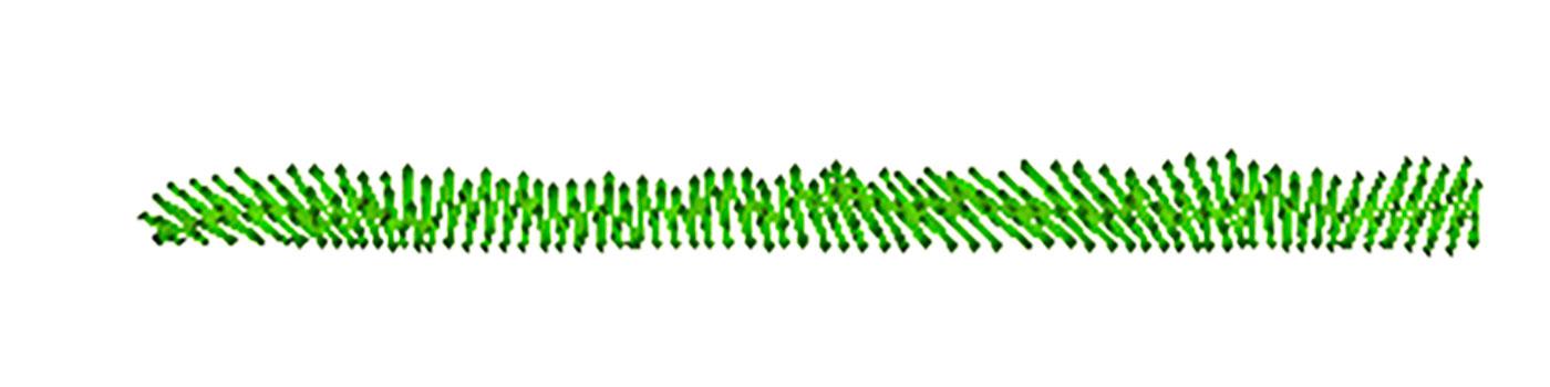Grass-Patch-2.jpg