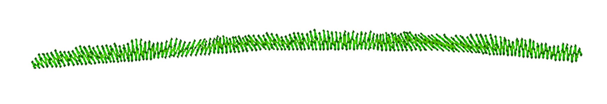 Grass-Patch-3.jpg